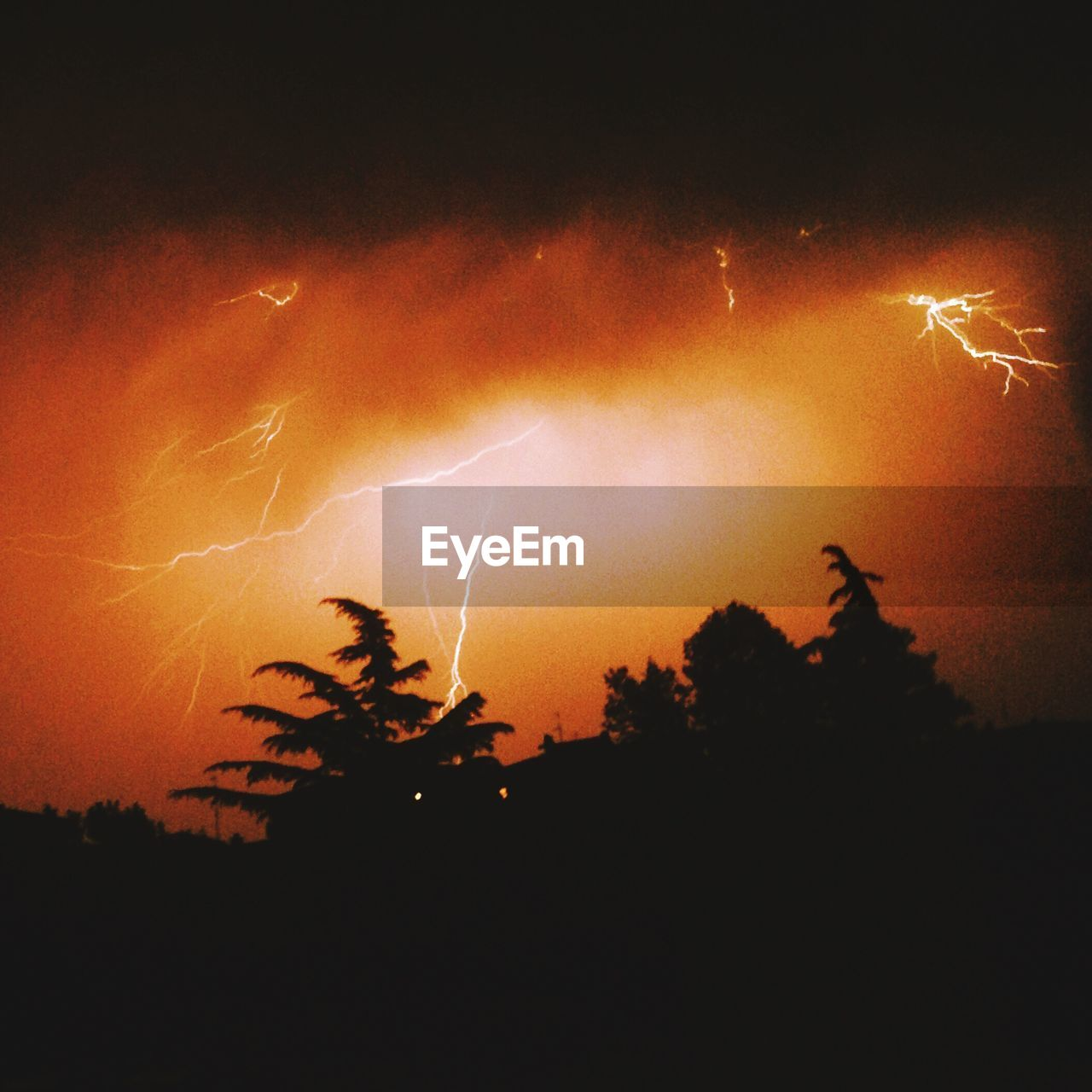 night, silhouette, sky, outdoors, low angle view, lightning, no people, scenics, long exposure, forked lightning, motion, nature, beauty in nature, tree, thunderstorm, power in nature