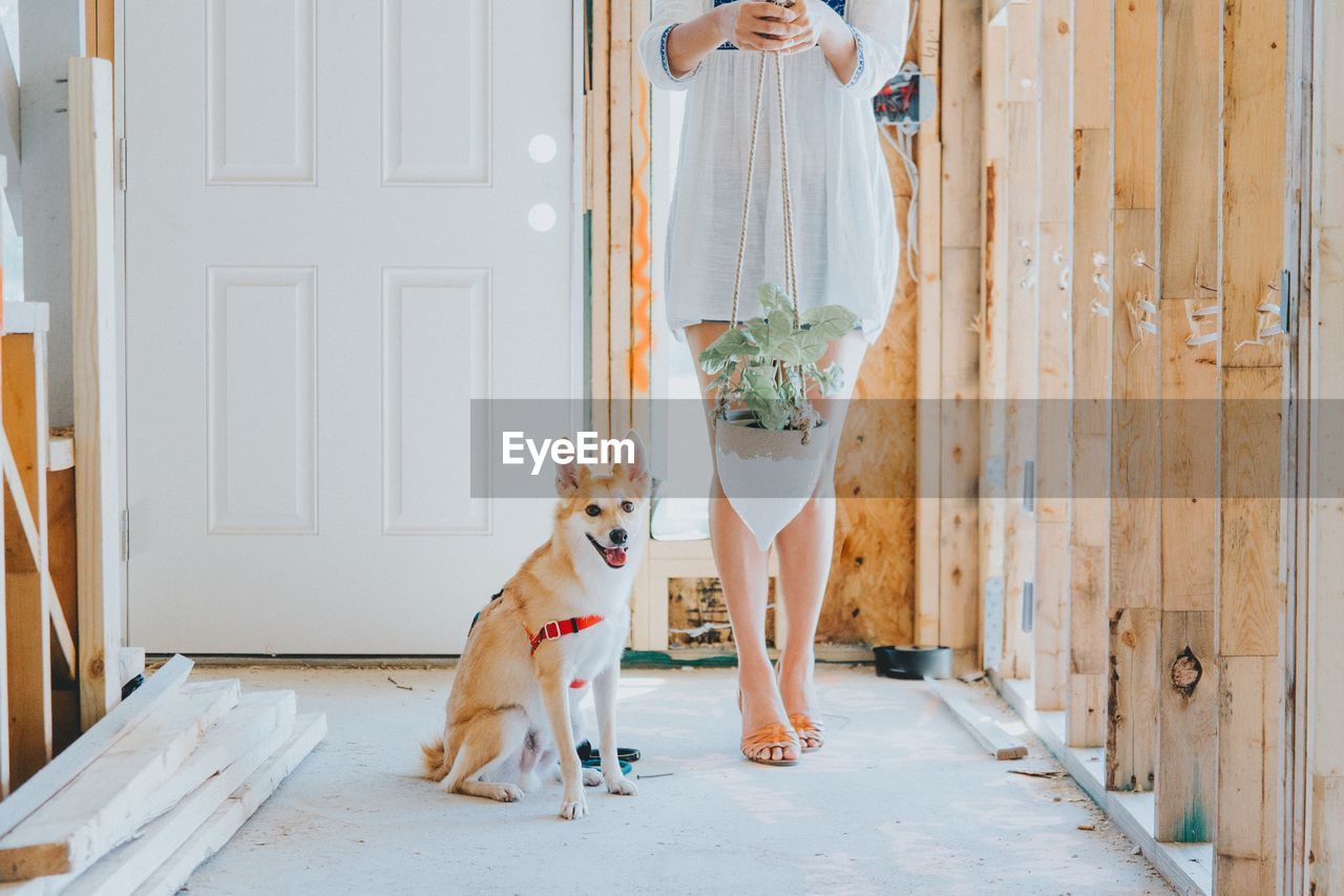 Low section of woman with dog standing on floor