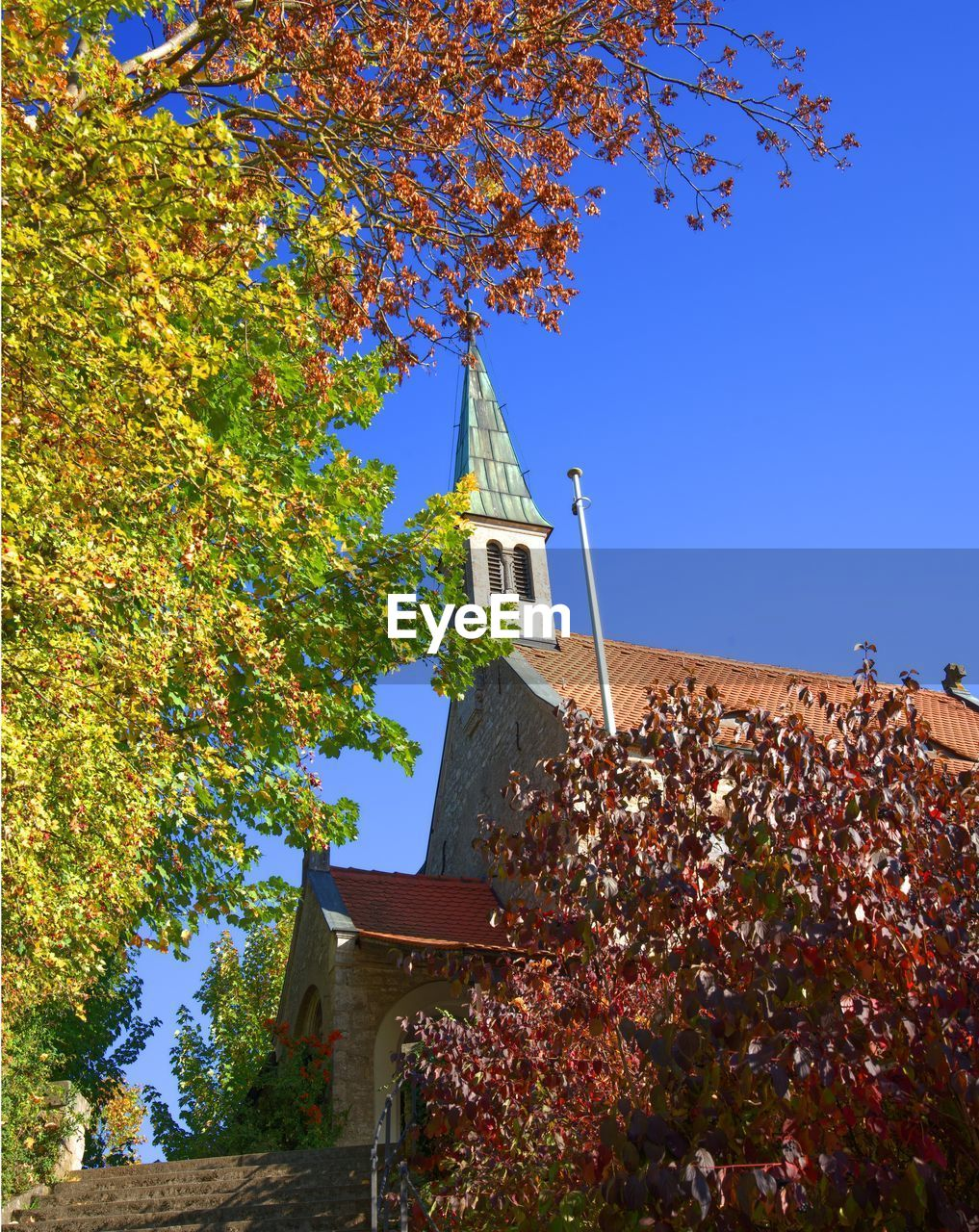 tree, architecture, built structure, building exterior, building, plant, sky, low angle view, autumn, place of worship, nature, tower, religion, change, blue, growth, belief, day, no people, outdoors, spire