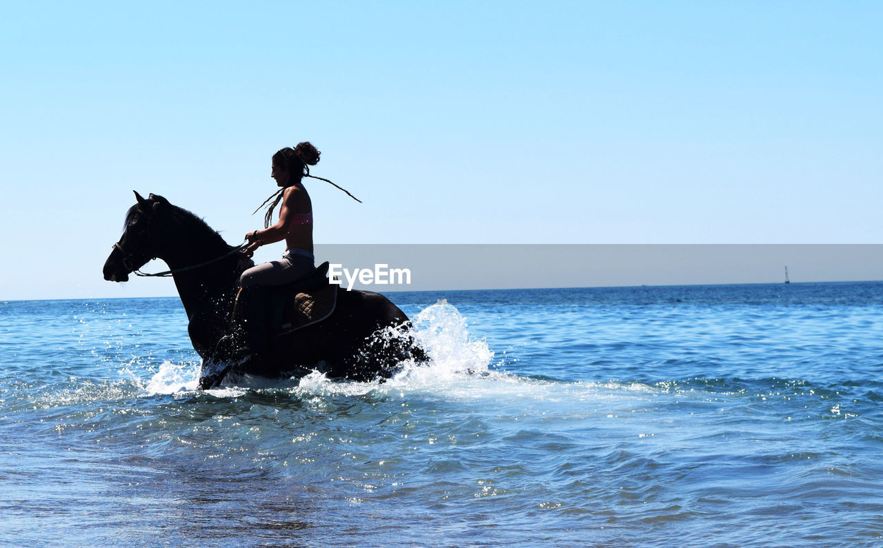 Shirtless man riding horse in sea against clear sky