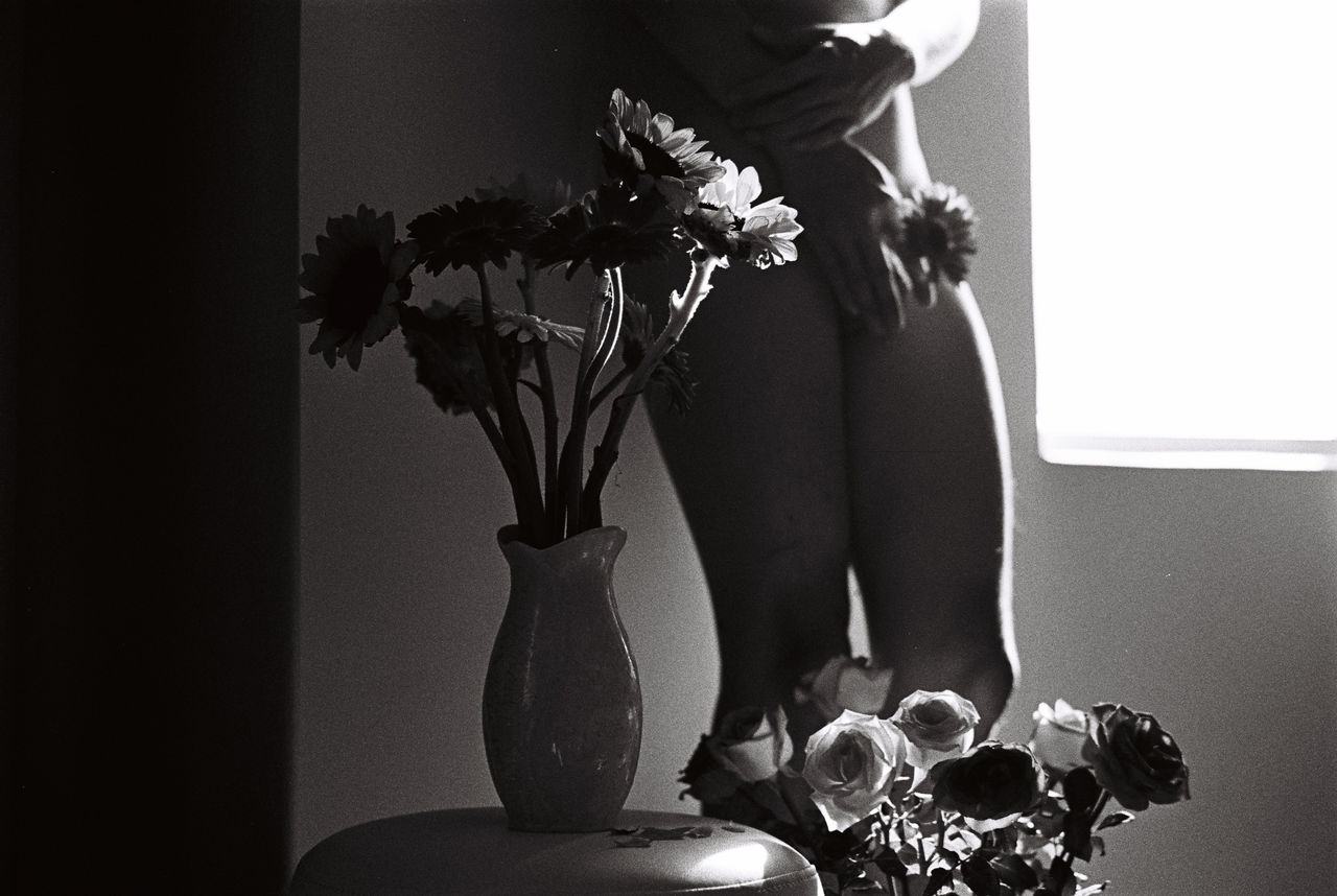 Midsection Of Naked Woman Standing By Window With Flowers In Vase At Home