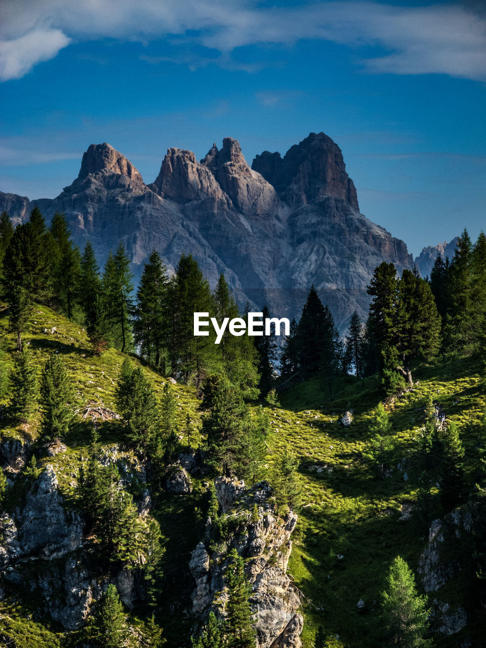 mountain, beauty in nature, sky, tree, plant, scenics - nature, tranquil scene, tranquility, mountain range, nature, green color, landscape, environment, non-urban scene, idyllic, land, no people, growth, rock, day, formation, outdoors, mountain peak, coniferous tree
