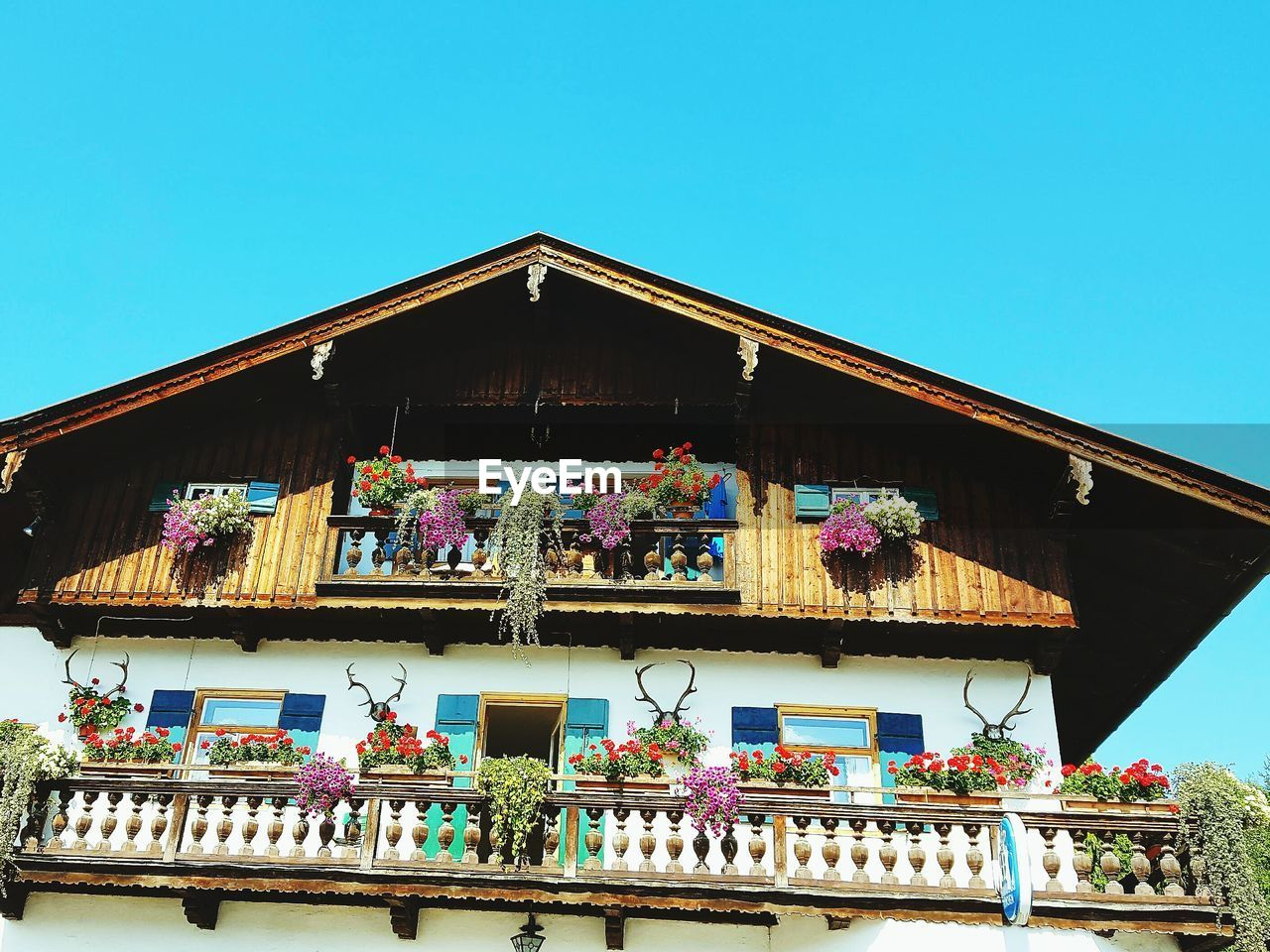 low angle view, architecture, built structure, day, building exterior, clear sky, outdoors, balcony, no people, blue, multi colored, hanging, window box, awning, flower, sky