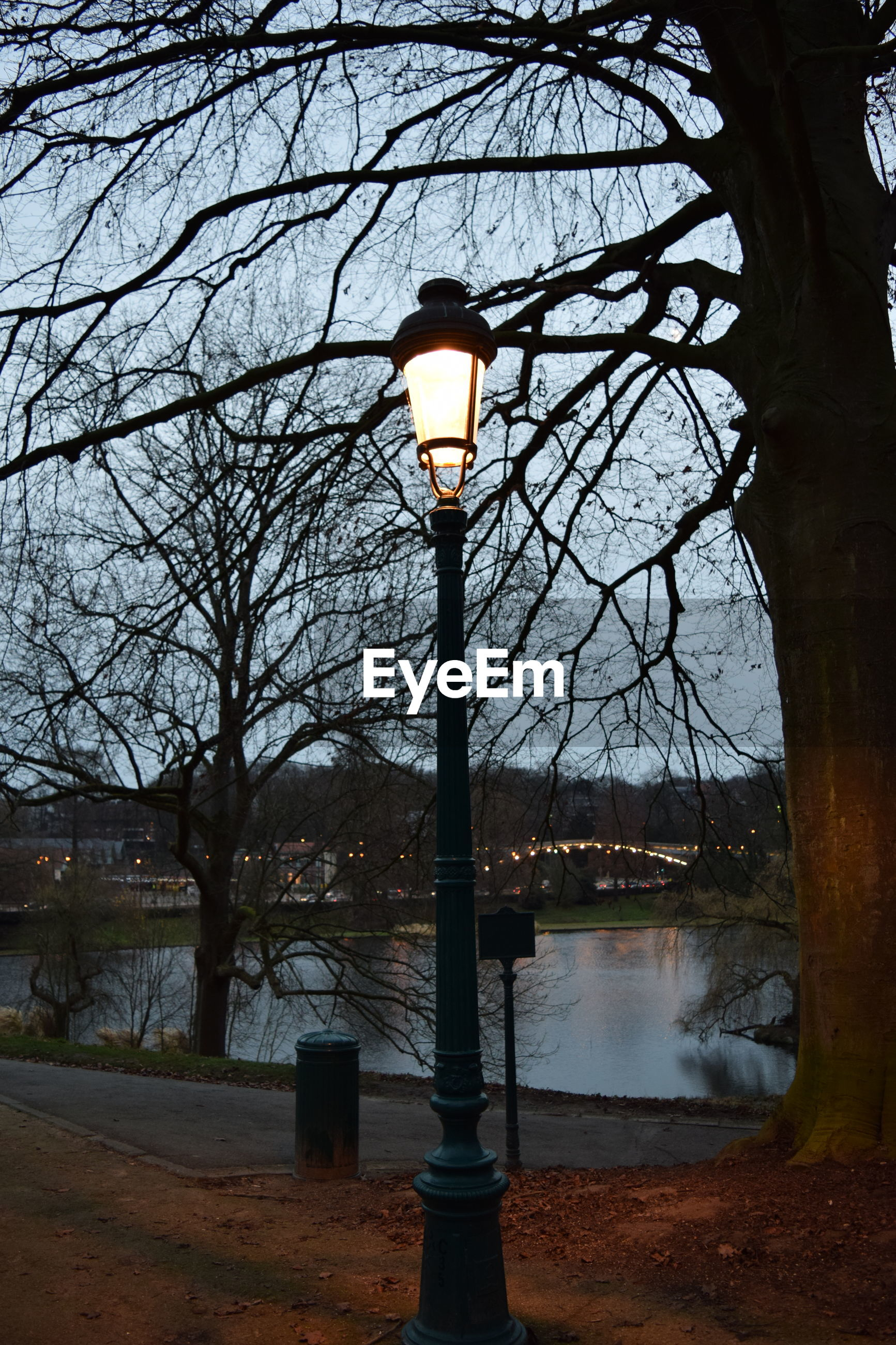 Low angle view of illuminated street light against bare tree