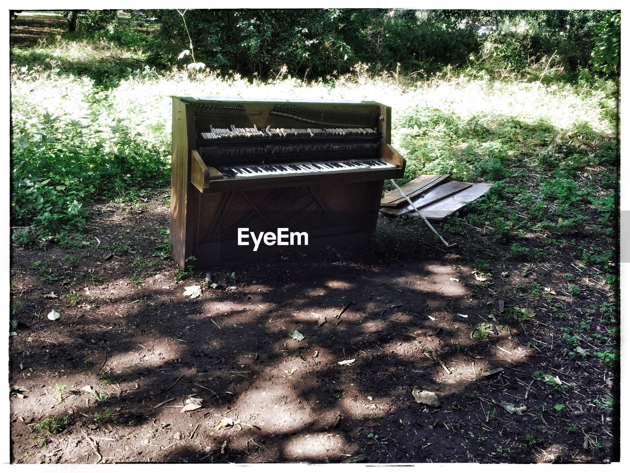 Abandoned piano on field