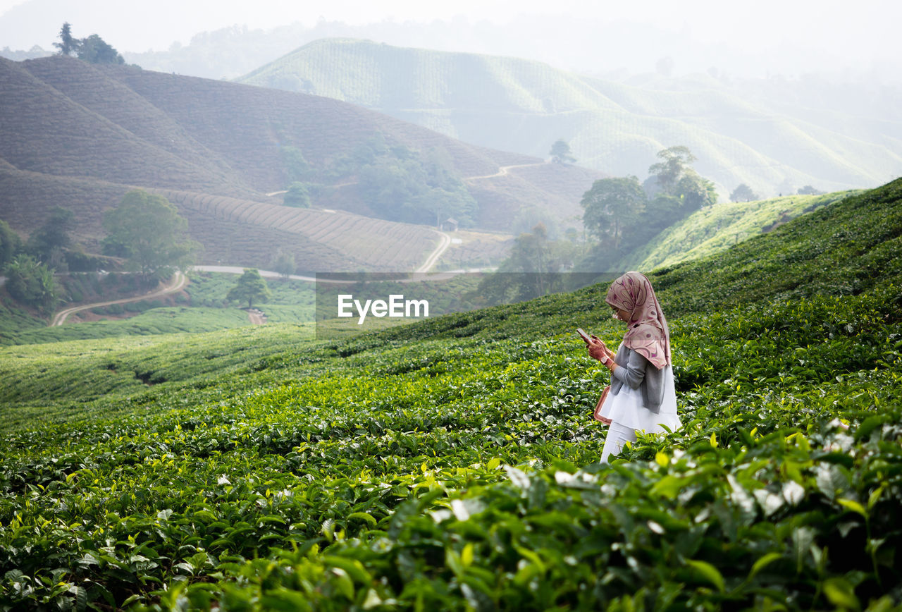 beauty in nature, one person, real people, mountain, green color, plant, scenics - nature, three quarter length, adult, nature, lifestyles, growth, leisure activity, tranquility, day, landscape, non-urban scene, women, standing, outdoors, tea crop