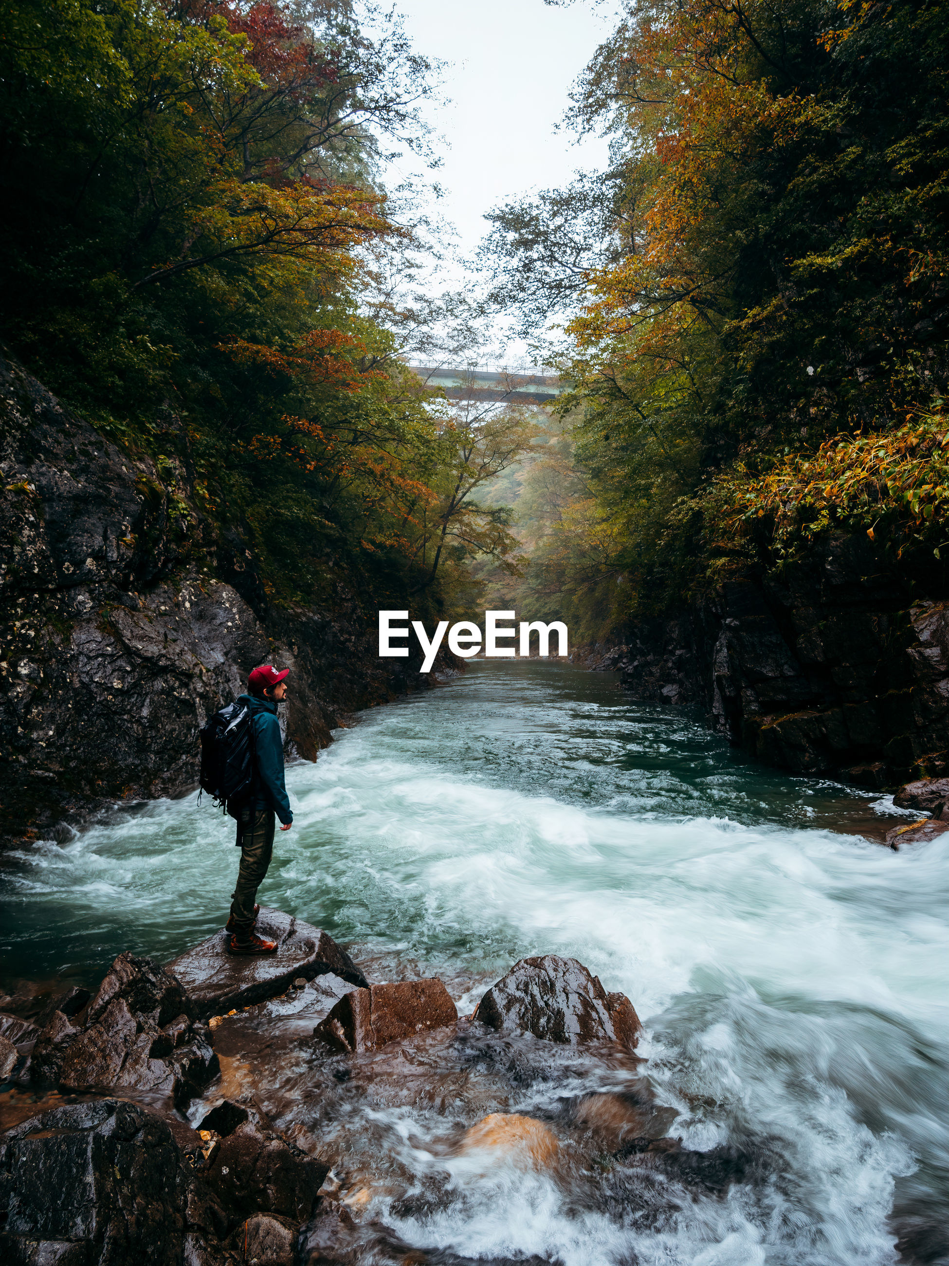 autumn, beauty in nature, tree, water, nature, river, scenics - nature, stream, forest, plant, one person, motion, land, leisure activity, wilderness, rock, rapid, sports, adventure, flowing water, activity, leaf, full length, waterfall, adult, hiking, environment, creek, men, outdoors, non-urban scene, day, vacation, lifestyles, trip, travel, water feature, holiday, tranquil scene, backpack, travel destinations, exploration, person, flowing, landscape, tranquility, standing, water sports, body of water, idyllic, recreation, long exposure, young adult