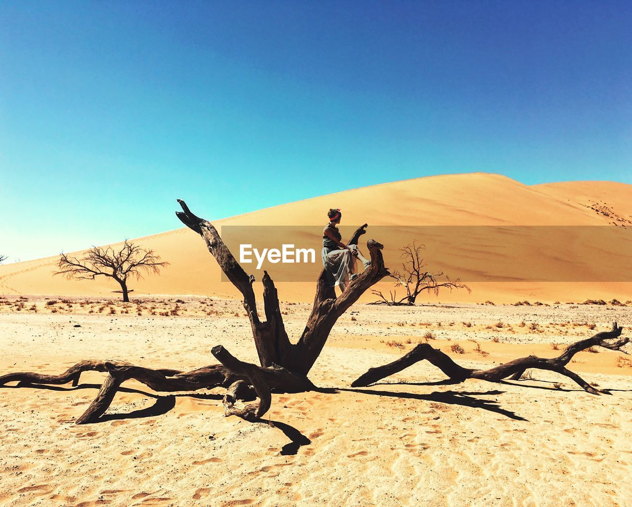Woman Sitting On Branch Of Bare Tree In Desert