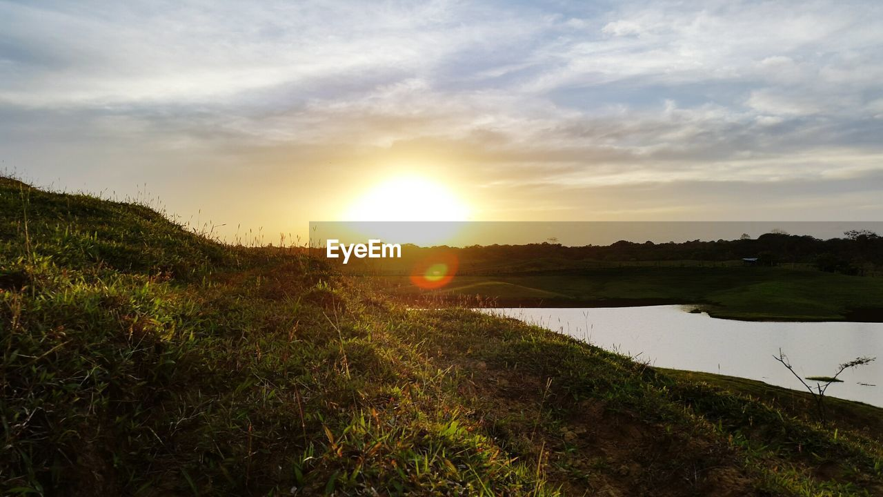 sun, sunset, nature, tranquility, tranquil scene, beauty in nature, sky, scenics, sunlight, grass, water, no people, outdoors, landscape, growth, day