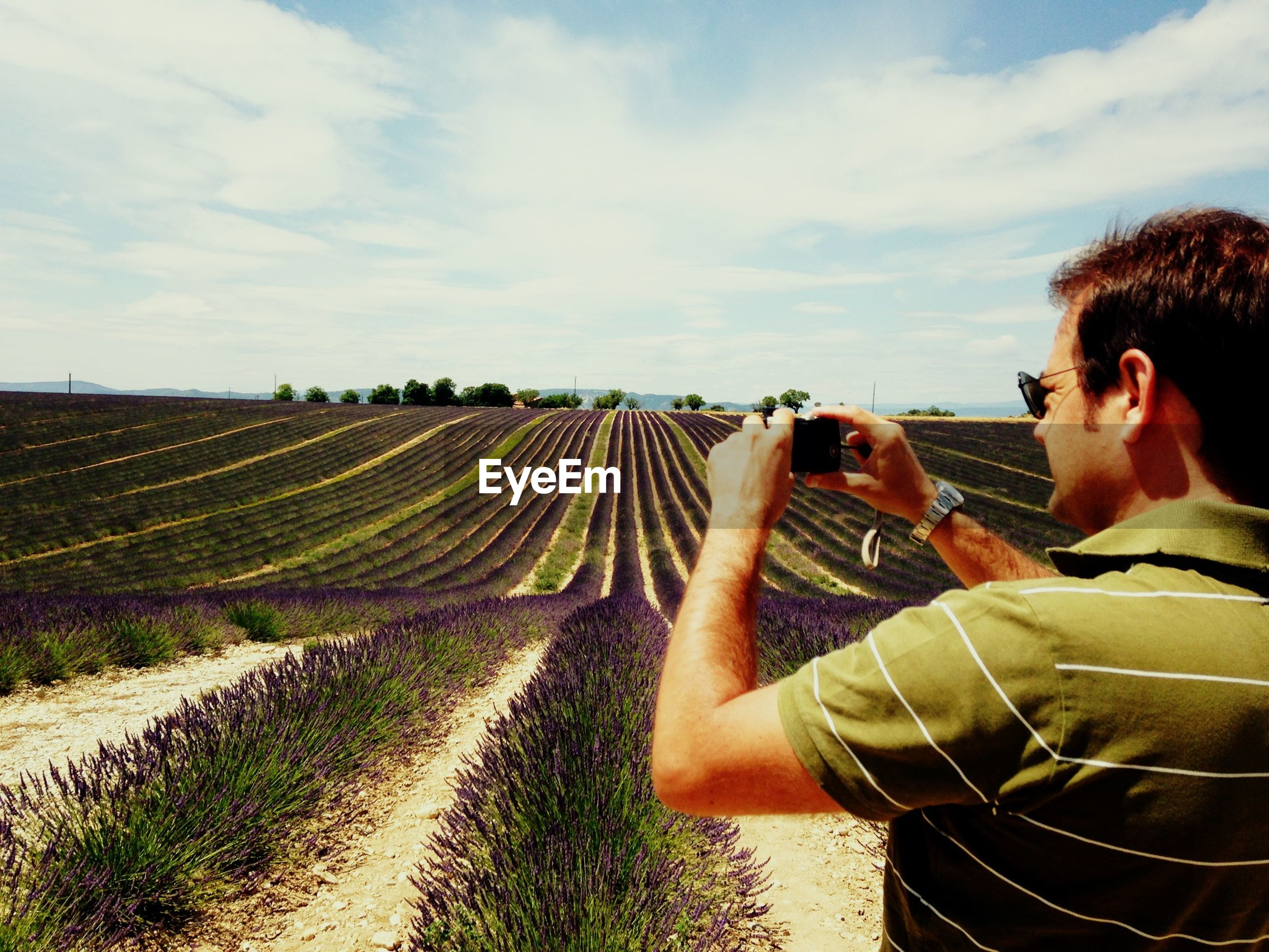 Man photographing agricultural field