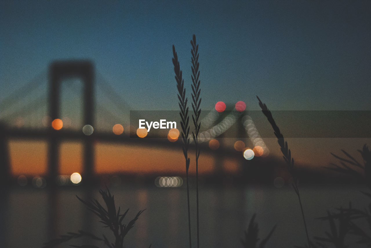 sky, no people, nature, dusk, illuminated, built structure, architecture, plant, water, transportation, sunset, bridge, focus on foreground, outdoors, bridge - man made structure, connection, lighting equipment, tree, close-up