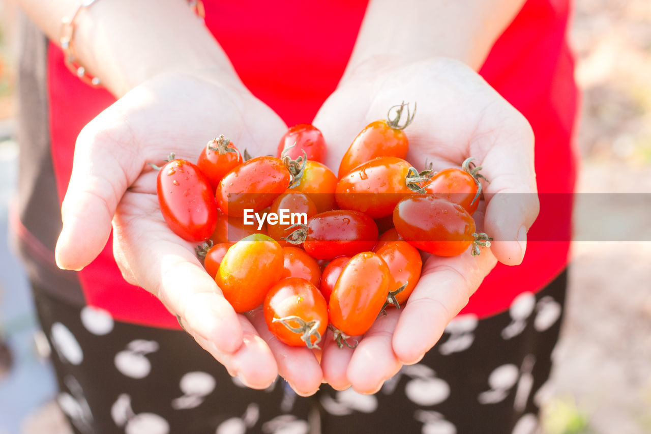 Woman Holding Red Tomatoes