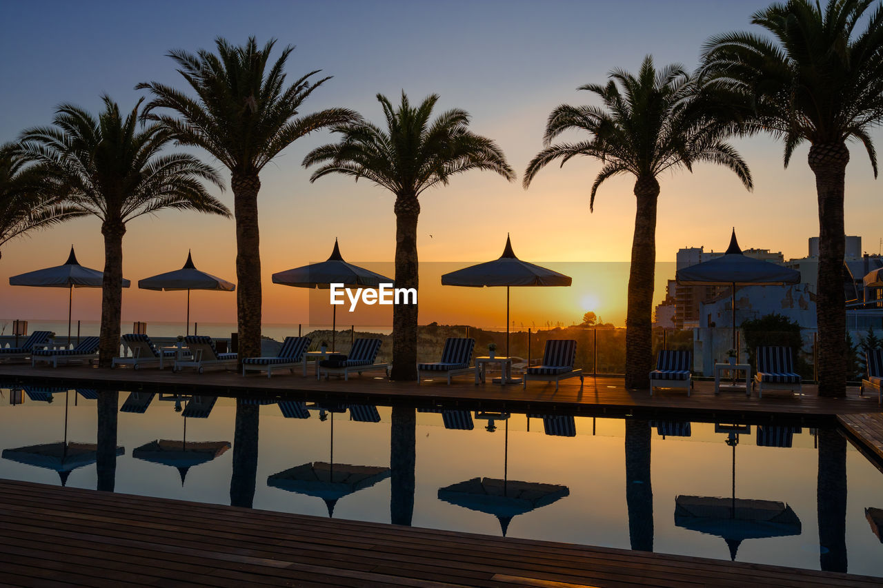 PALM TREES BY SWIMMING POOL AT SUNSET