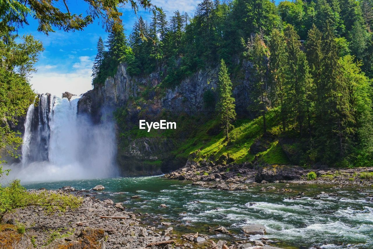water, tree, beauty in nature, scenics - nature, waterfall, plant, forest, nature, motion, flowing water, long exposure, land, rock, day, power in nature, non-urban scene, power, environment, no people, flowing, outdoors