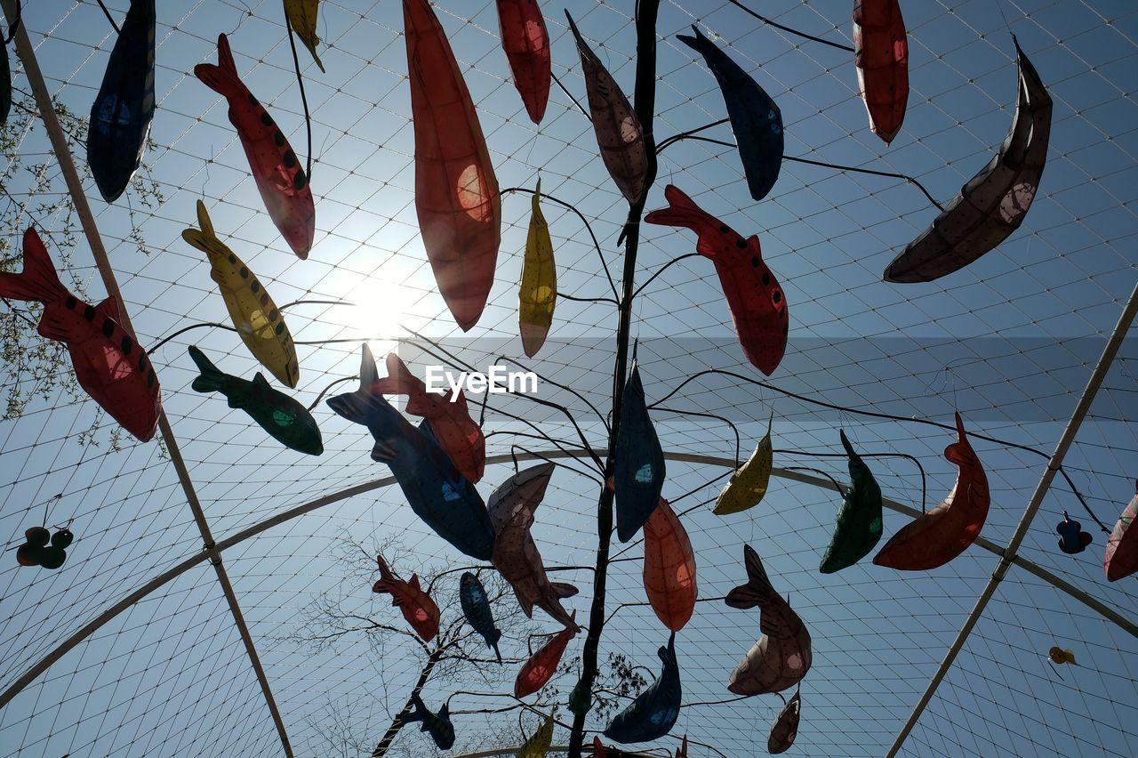 Low Angle View Of Carp Streamers Over Net