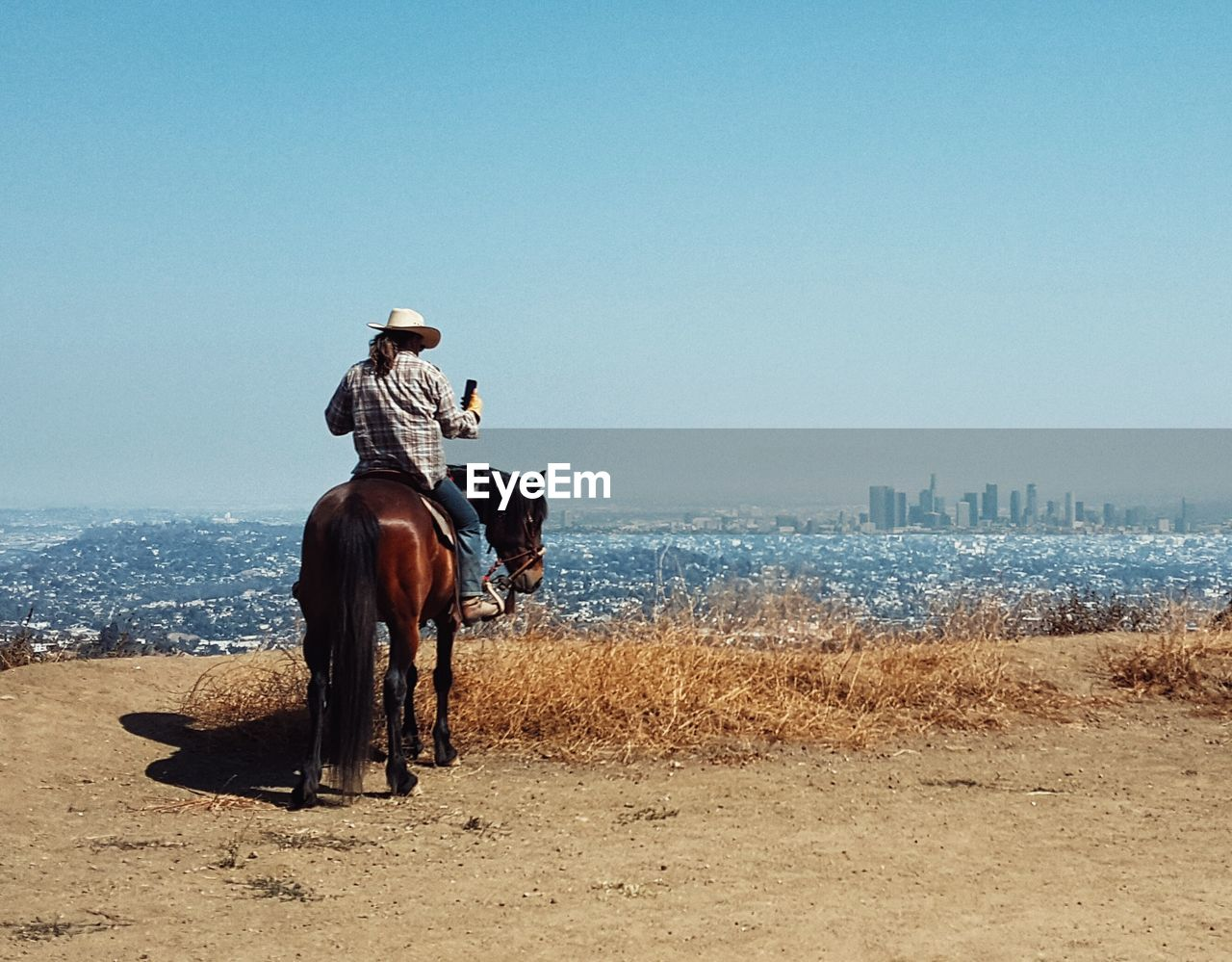 Rear View Of Cowboy Sitting On Horse Against Clear Sky