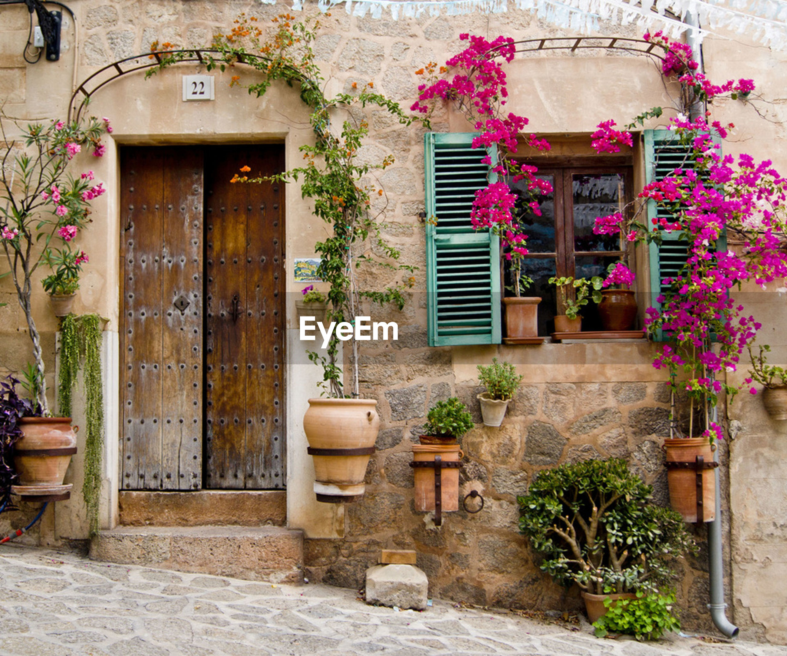 building exterior, architecture, built structure, house, door, flower, plant, potted plant, entrance, window, residential structure, closed, growth, front or back yard, residential building, wall - building feature, wall, day, flower pot, outdoors