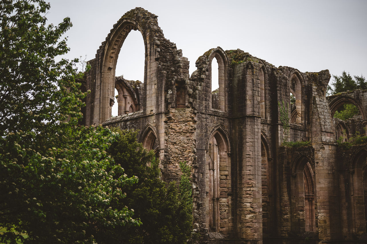 history, architecture, built structure, the past, tree, arch, sky, plant, old ruin, building exterior, ancient, nature, day, low angle view, no people, old, abandoned, clear sky, travel destinations, travel, ruined, outdoors, ancient civilization, archaeology
