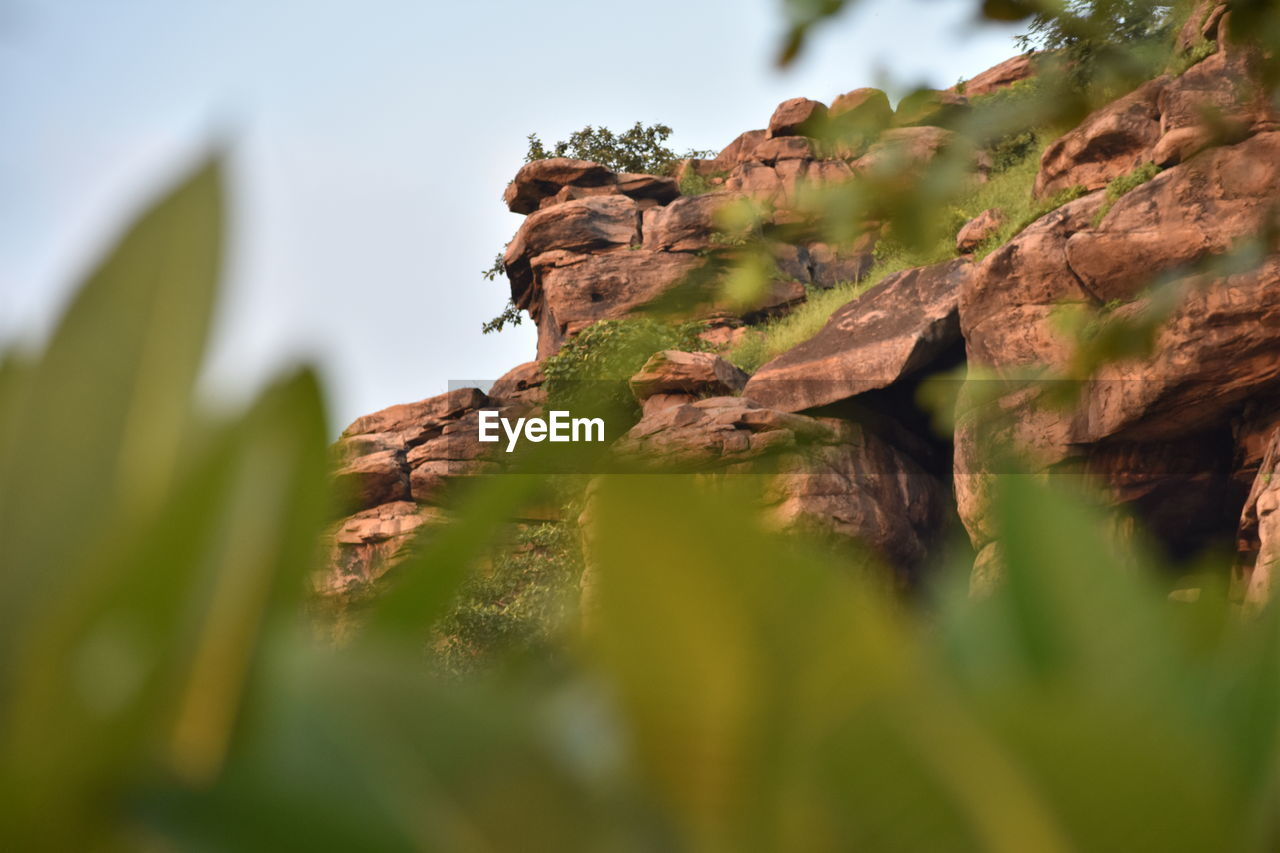 selective focus, plant, nature, no people, low angle view, day, beauty in nature, sky, rock, growth, focus on background, land, rock formation, green color, solid, rock - object, tranquility, mountain, outdoors, tree