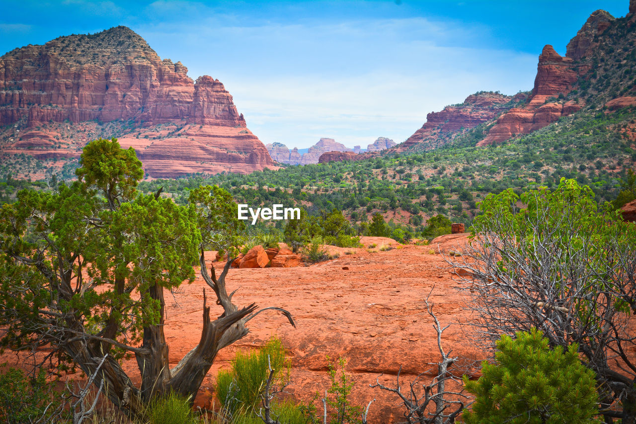 rock formation, rock, rock - object, solid, beauty in nature, scenics - nature, mountain, tranquil scene, plant, non-urban scene, physical geography, geology, tranquility, sky, nature, environment, landscape, tree, travel destinations, travel, no people, mountain range, formation, arid climate, climate, outdoors, eroded, sandstone, semi-arid