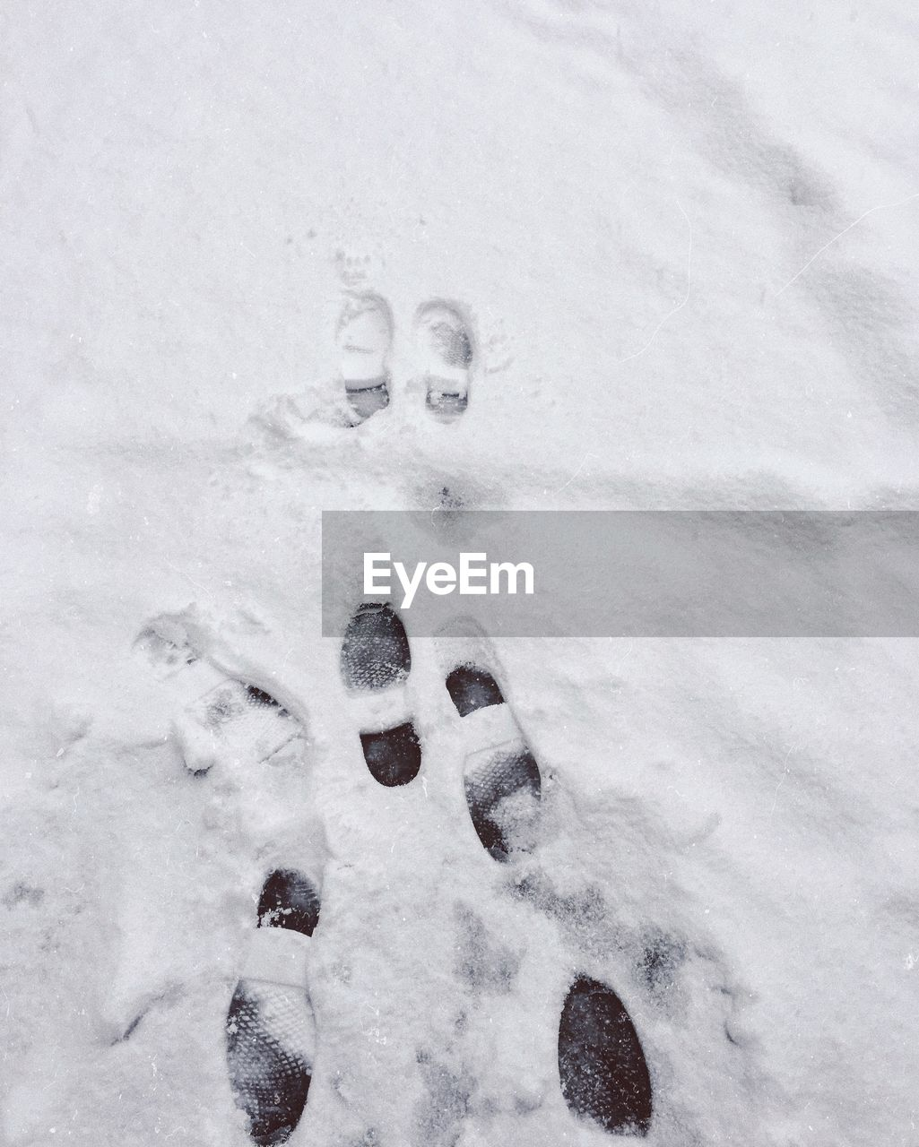 winter, cold temperature, snow, paw print, high angle view, no people, white color, day, outdoors, nature, close-up