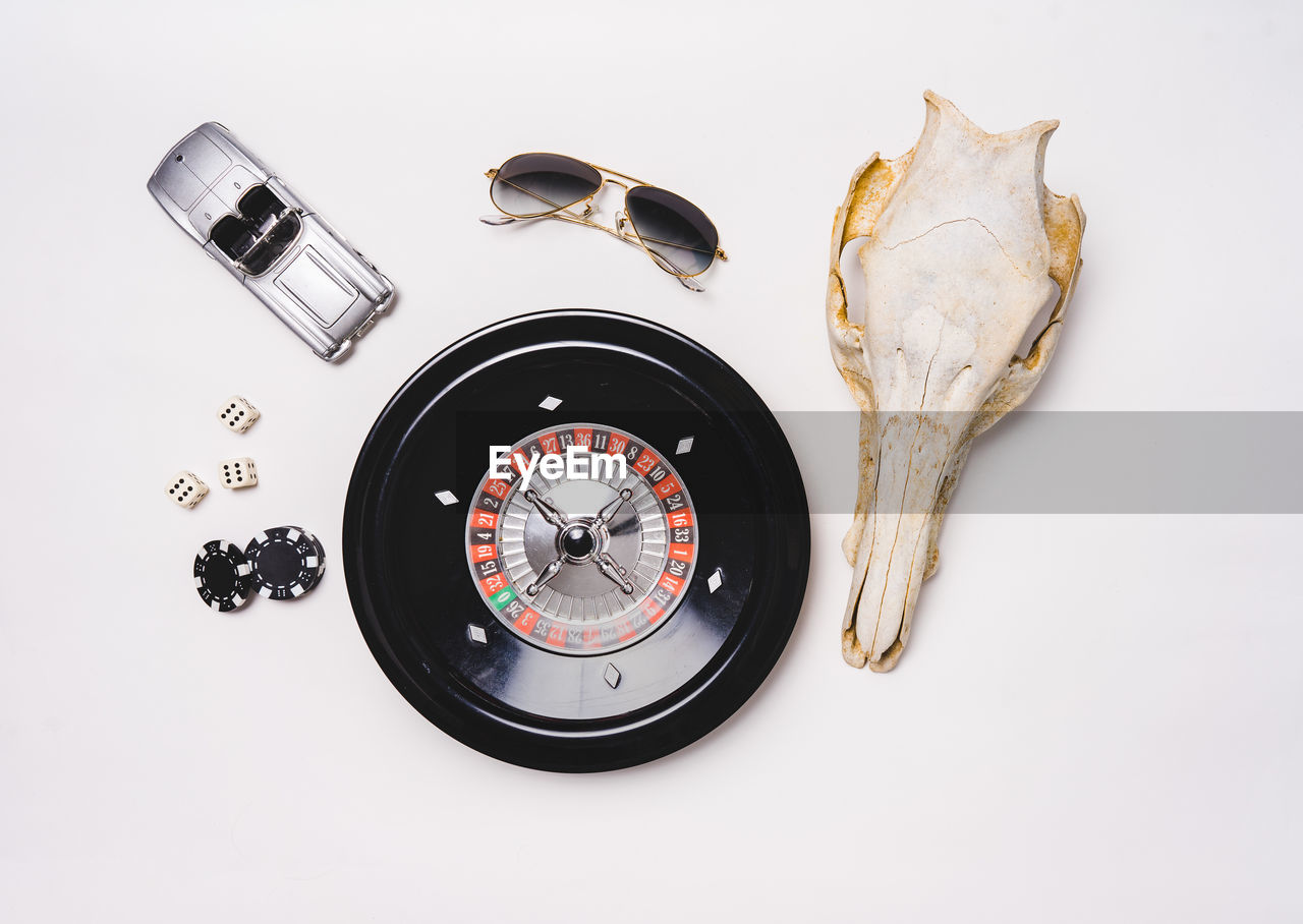 indoors, studio shot, white background, still life, no people, animal, close-up, accuracy, animal themes, animal body part, bone, high angle view, table, guidance, science, animal wildlife, shape, directly above, body part, technology