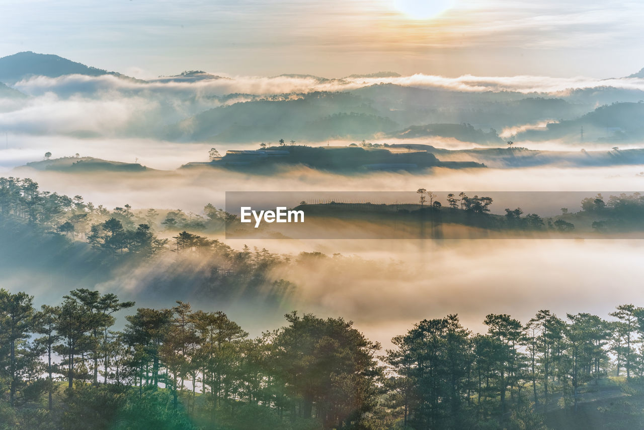 sky, beauty in nature, cloud - sky, tree, scenics - nature, tranquility, plant, tranquil scene, nature, no people, idyllic, sunset, outdoors, fog, non-urban scene, day, growth, cloudscape, mountain, hazy