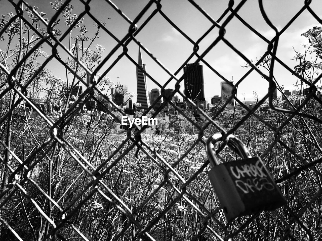 fence, boundary, barrier, safety, security, protection, chainlink fence, metal, sky, no people, day, nature, padlock, outdoors, lock, architecture, close-up, built structure, focus on foreground, grass