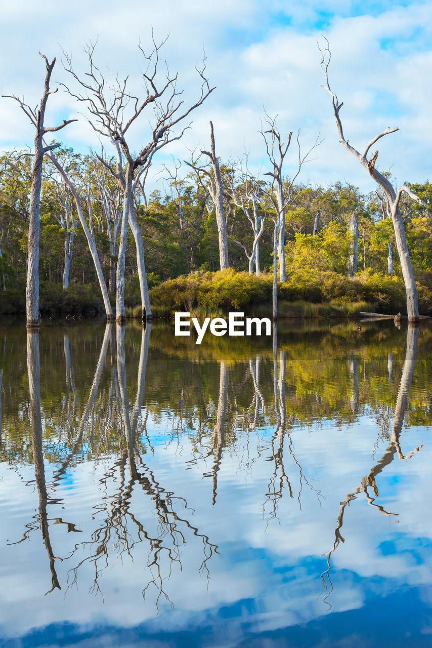 Photo taken in Margaret River, Australia
