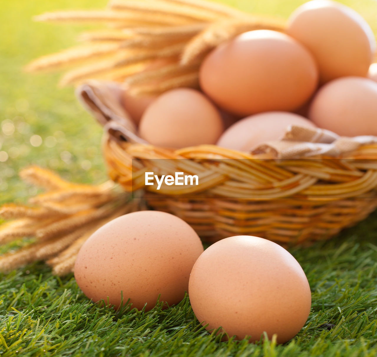 egg, food and drink, food, freshness, basket, grass, close-up, healthy eating, nature, no people, still life, brown, container, wellbeing, plant, day, fragility, selective focus, animal egg, raw food