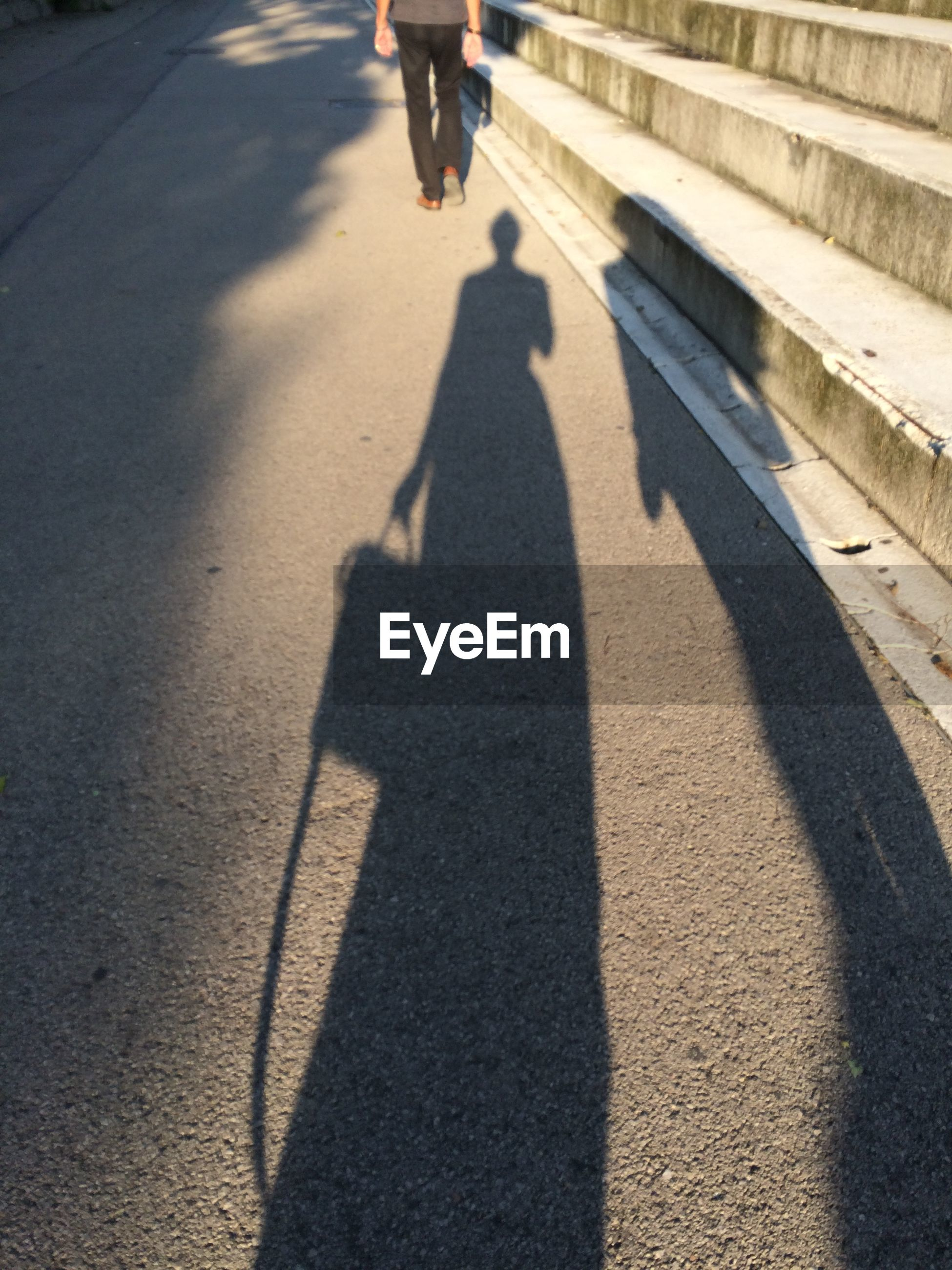 Shadow of people on the road