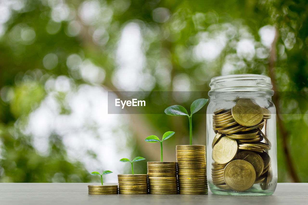 finance, coin, wealth, currency, business, savings, investment, focus on foreground, finance and economy, stack, jar, large group of objects, table, no people, growth, gold colored, business finance and industry, close-up, nature, still life, economy, making money