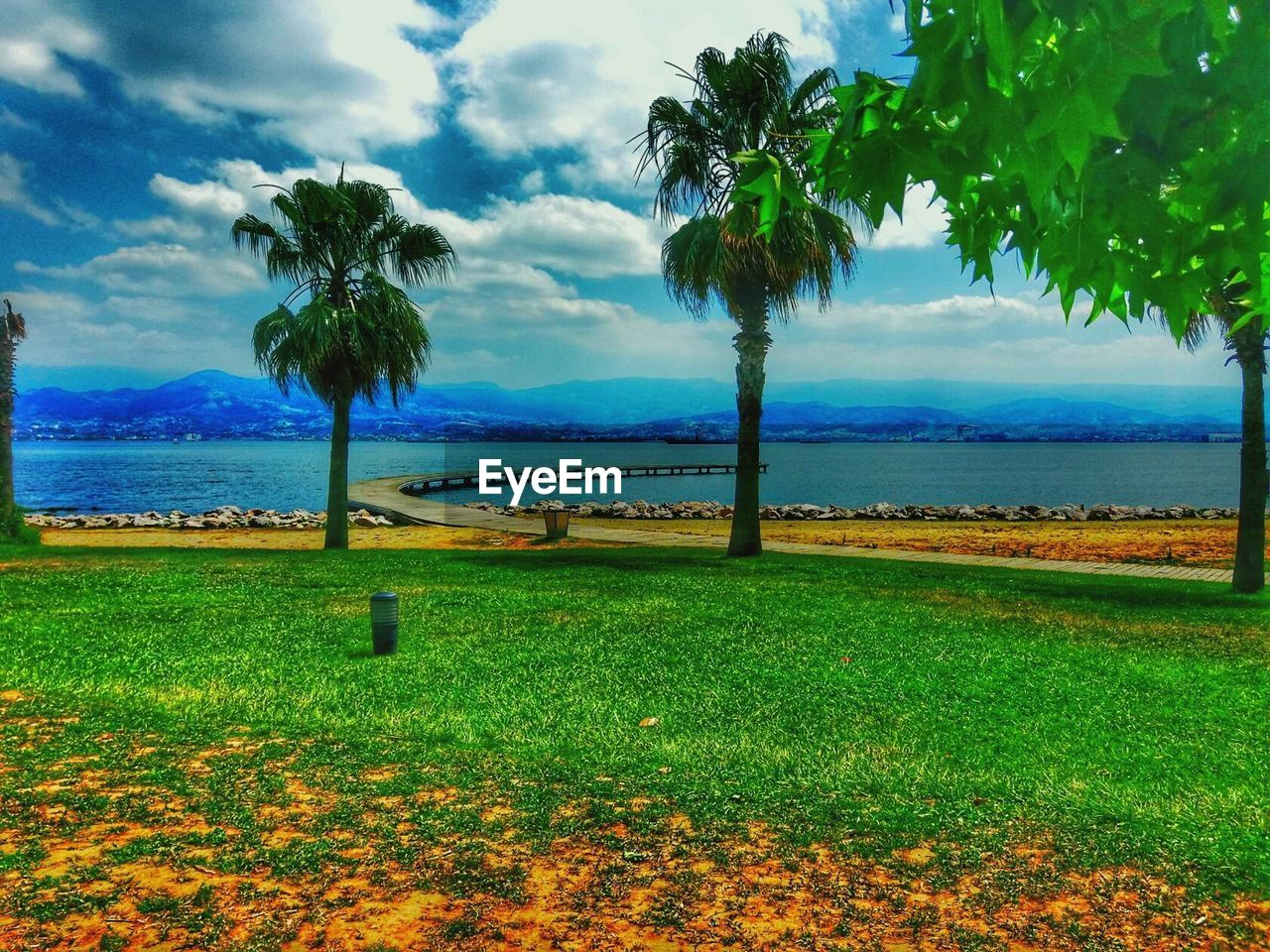 water, sky, plant, cloud - sky, tree, sea, nature, tropical climate, beauty in nature, tranquil scene, scenics - nature, palm tree, tranquility, land, grass, growth, no people, day, horizon, horizon over water, outdoors