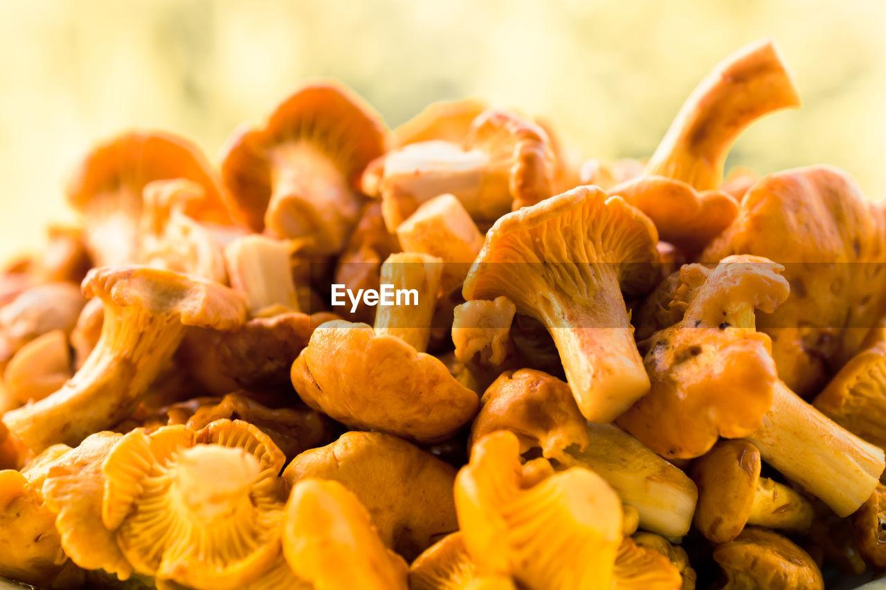 Close-Up Of Chanterelle Mushrooms