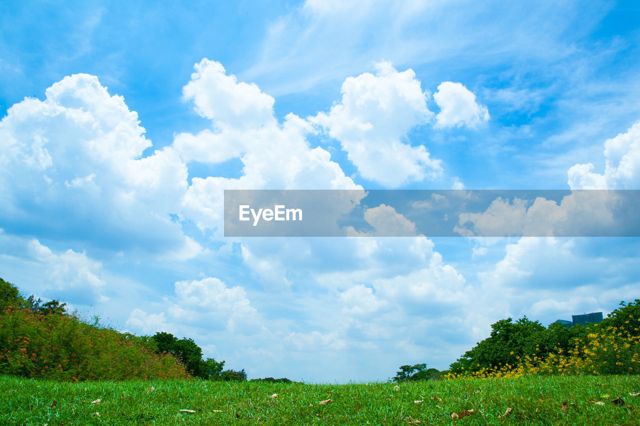 cloud - sky, beauty in nature, sky, nature, tranquility, day, scenics, tranquil scene, idyllic, green color, grass, field, no people, outdoors, blue, landscape, growth, tree