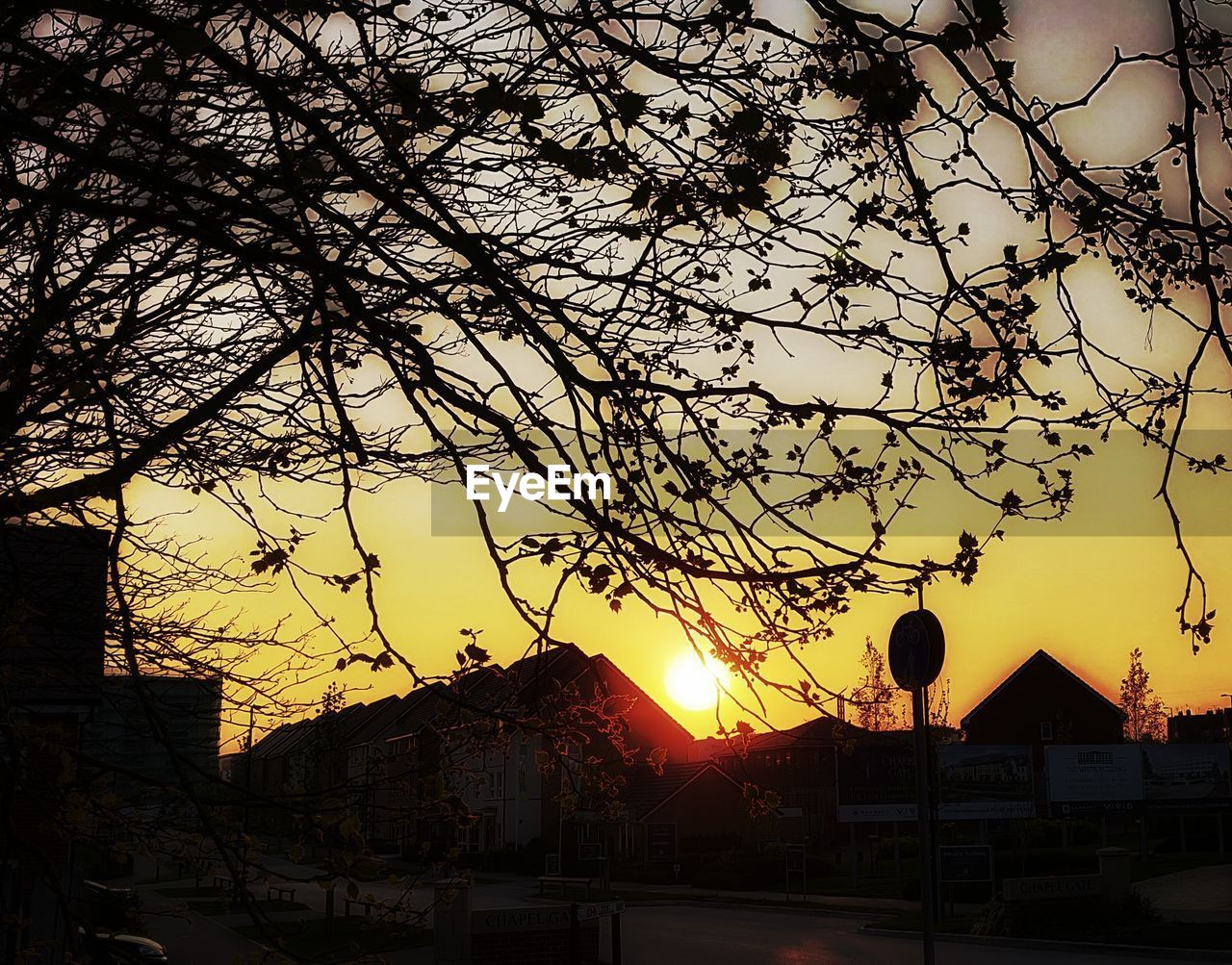 architecture, building exterior, built structure, sunset, sky, tree, nature, silhouette, building, plant, no people, cloud - sky, orange color, residential district, outdoors, city, house, sun, branch, street, townscape