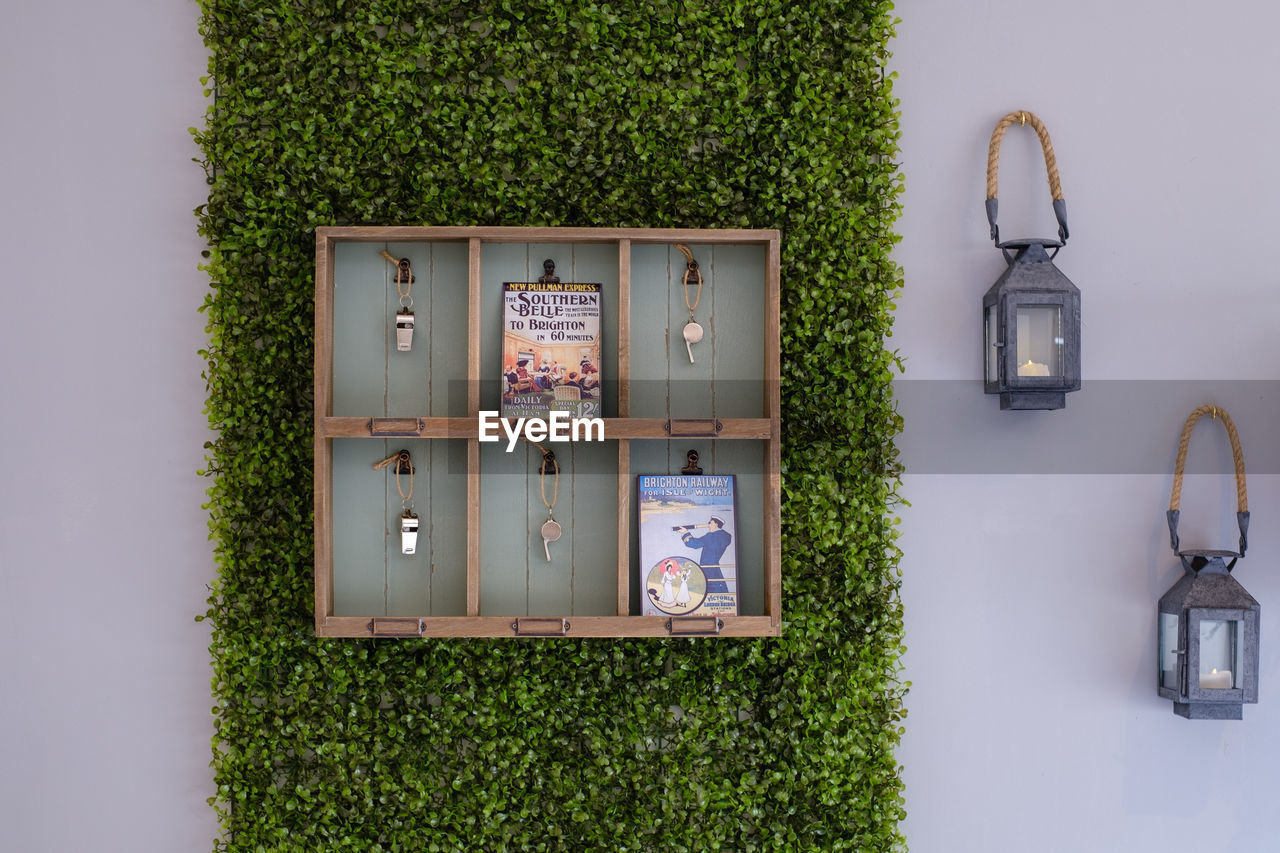 INFORMATION SIGN HANGING ON WALL BY PLANTS
