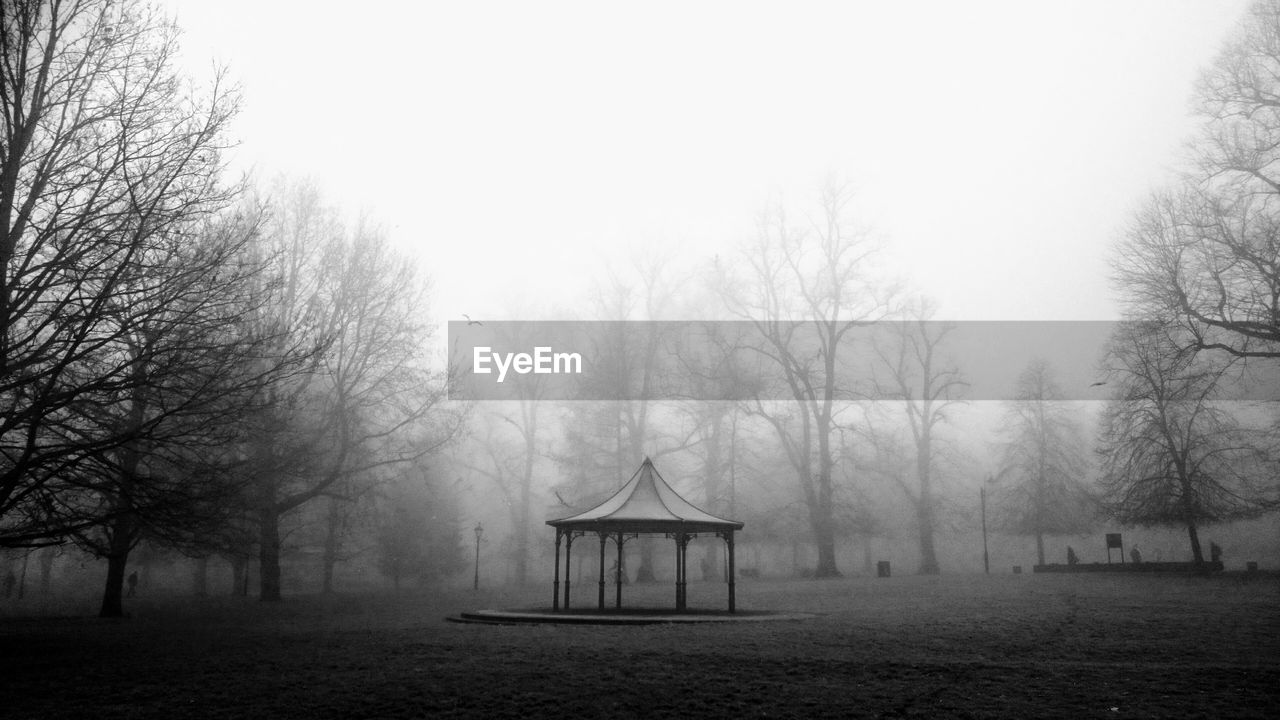 fog, tree, plant, sky, nature, tranquility, land, bare tree, no people, tranquil scene, beauty in nature, day, park, cold temperature, environment, scenics - nature, winter, playground, outdoors