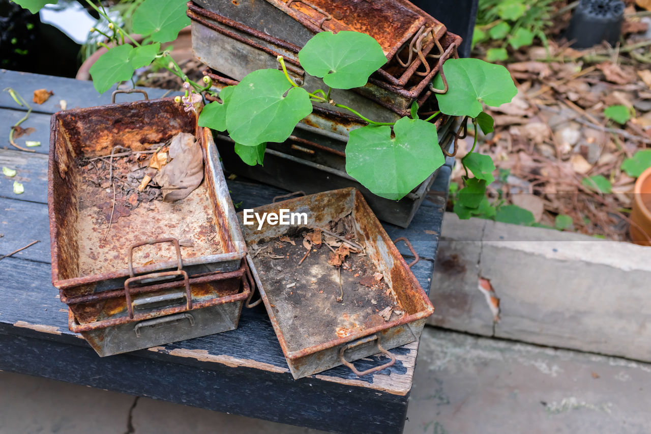 leaf, plant part, day, metal, nature, rusty, high angle view, no people, outdoors, close-up, abandoned, damaged, green color, growth, focus on foreground, old, plant, run-down, obsolete, decline, deterioration, gardening