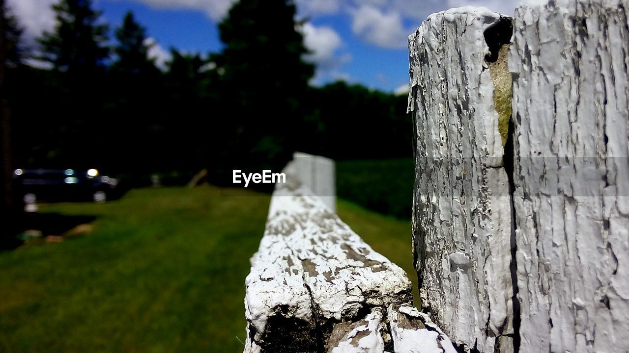 focus on foreground, wood - material, plant, nature, no people, tree, textured, close-up, day, outdoors, tree trunk, trunk, grass, rough, field, land, pattern, bark, metal, sunlight, wooden post