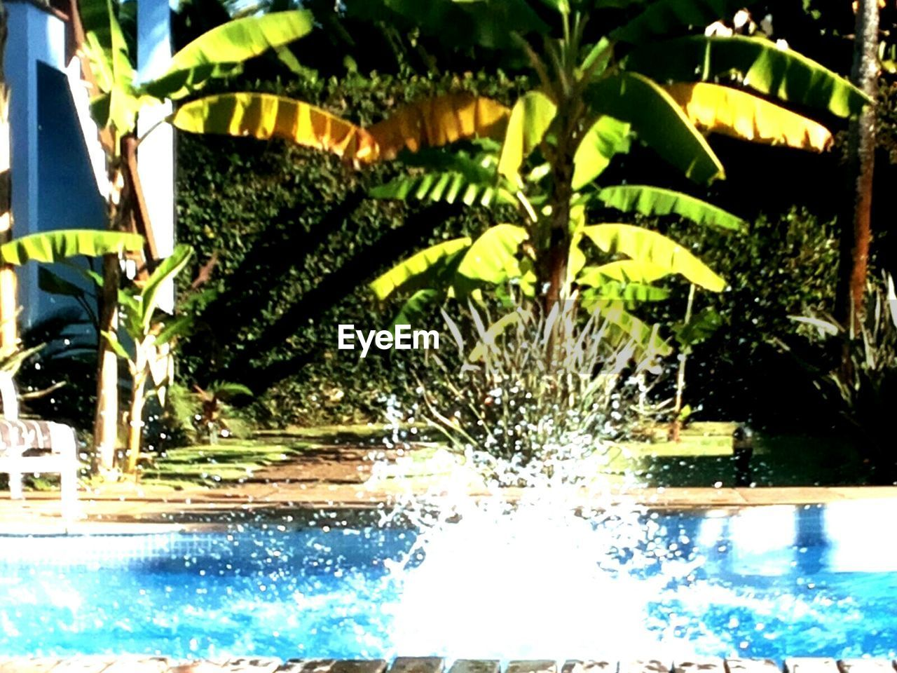 water, swimming pool, no people, nature, day, outdoors, close-up, freshness
