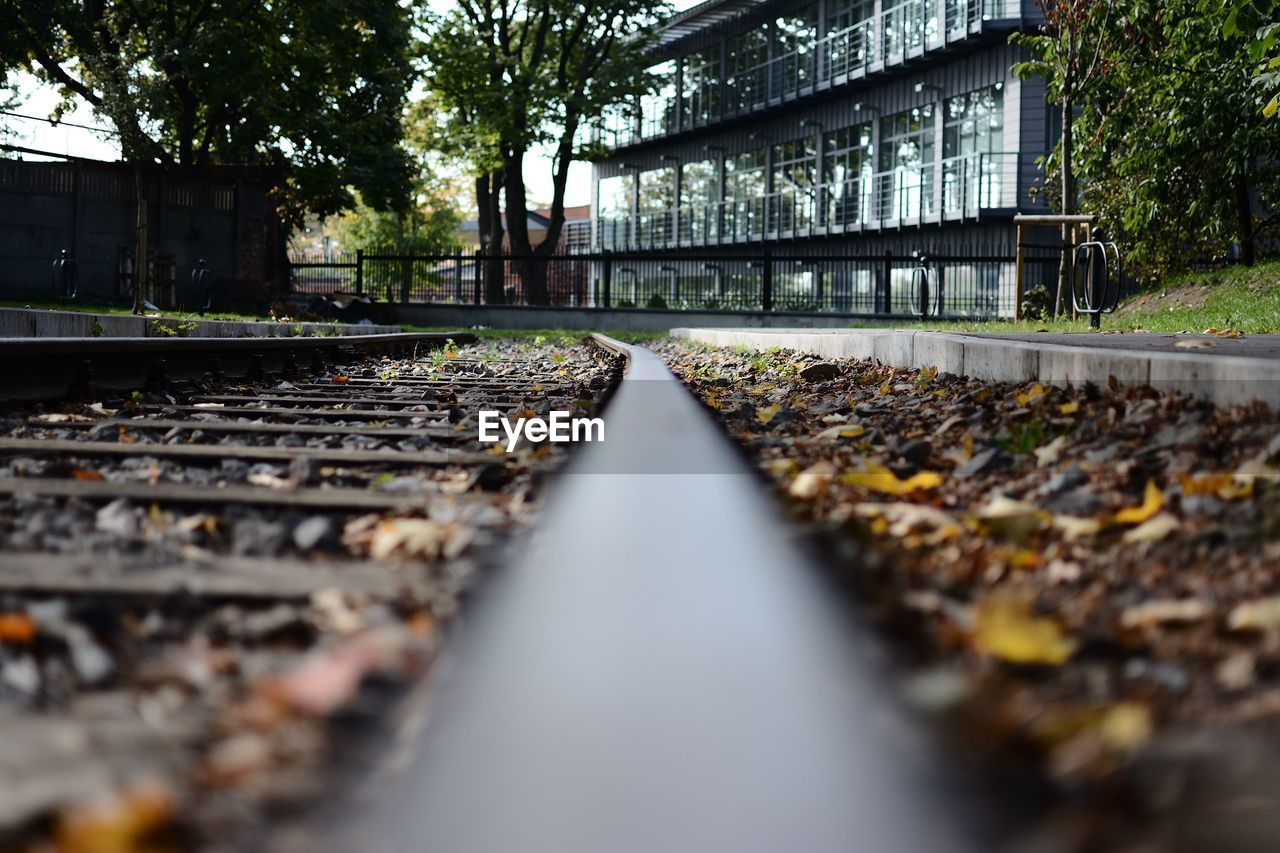 rail transportation, track, railroad track, plant, transportation, diminishing perspective, tree, day, no people, metal, selective focus, built structure, architecture, direction, surface level, nature, the way forward, public transportation, solid, outdoors, gravel, long