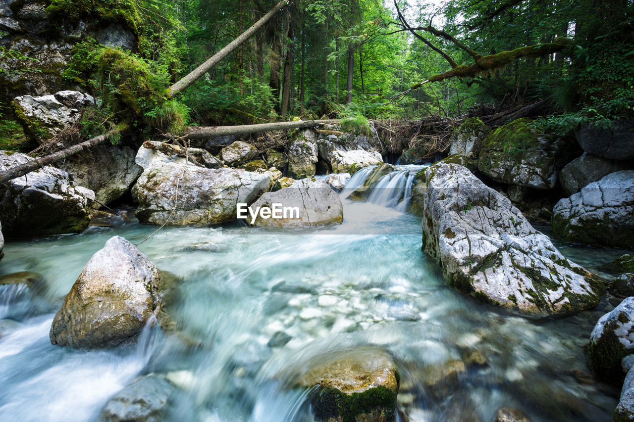 nature, water, flowing water, river, waterfall, beauty in nature, motion, tranquil scene, long exposure, scenics, tree, forest, tranquility, no people, day, rock - object, non-urban scene, outdoors