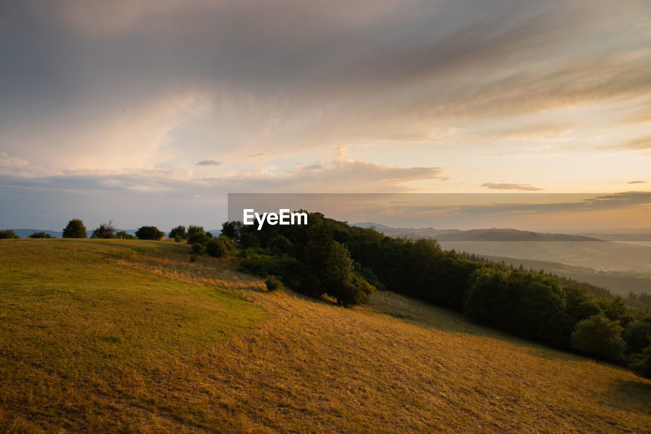 scenics - nature, sky, beauty in nature, tranquil scene, tranquility, environment, plant, landscape, cloud - sky, sunset, land, non-urban scene, field, no people, nature, tree, idyllic, grass, growth, green color, outdoors