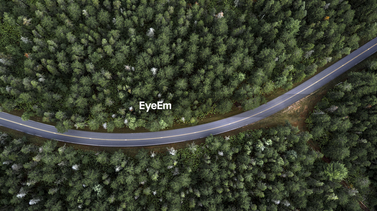 Aerial VIEW OF Country Road Through Forest
