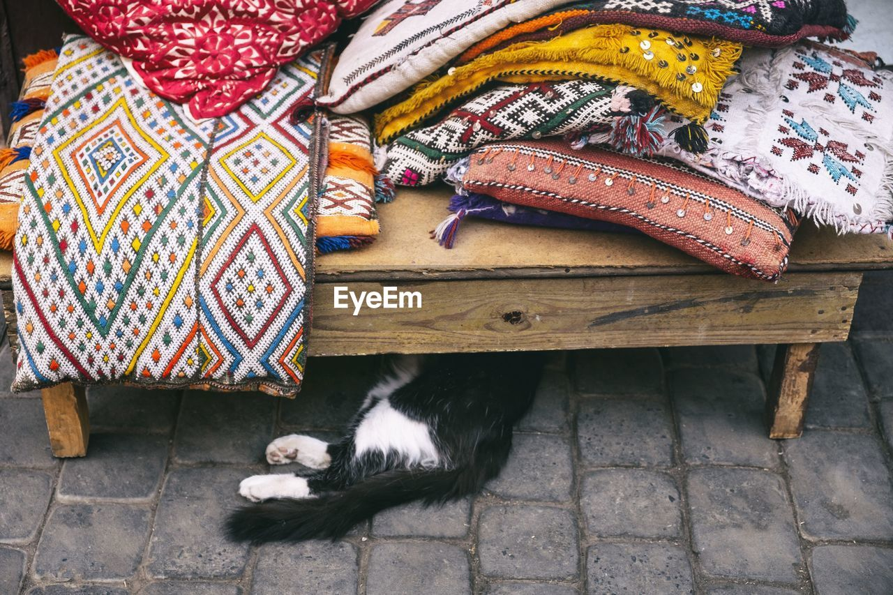 domestic animals, mammal, domestic, pets, animal themes, vertebrate, animal, no people, high angle view, multi colored, one animal, relaxation, clothing, domestic cat, textile, pattern, day, cat, feline, indoors, floral pattern