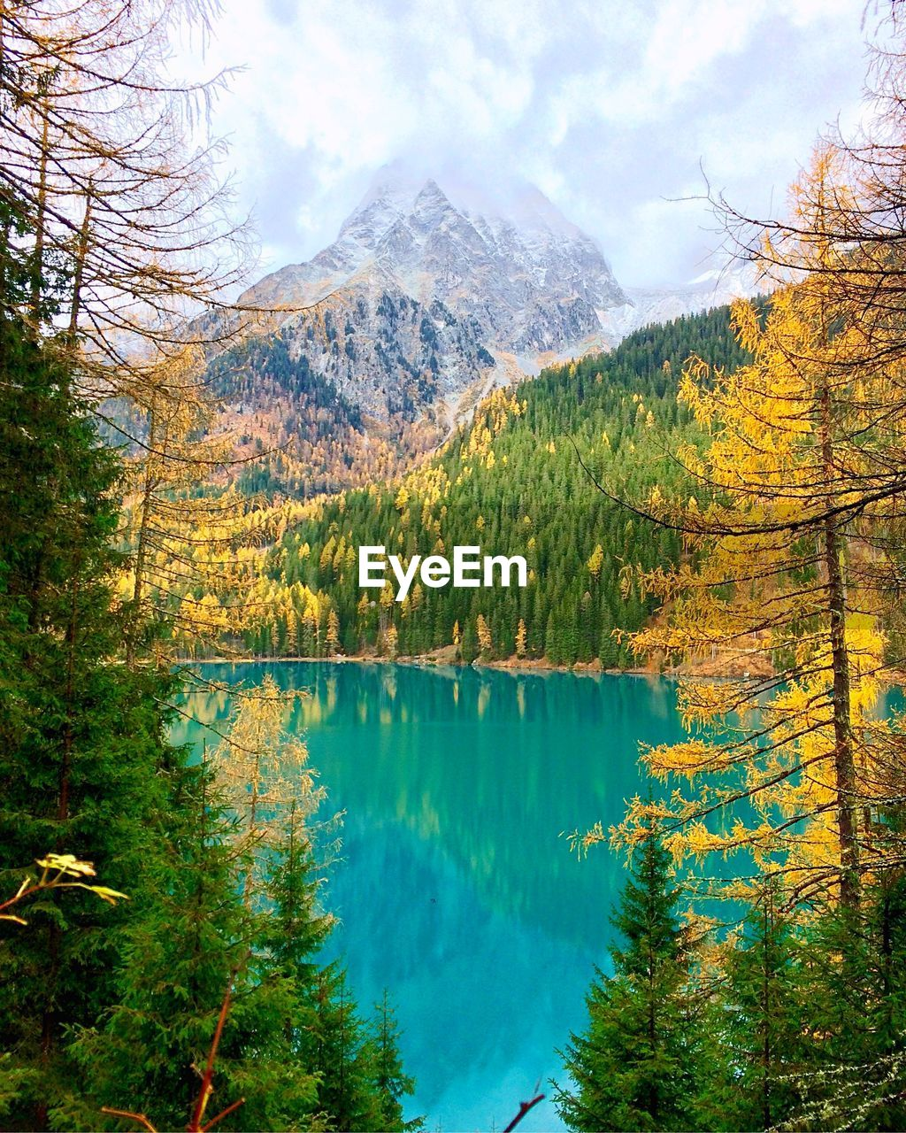 tree, beauty in nature, scenics - nature, water, mountain, plant, tranquility, tranquil scene, lake, sky, reflection, nature, idyllic, non-urban scene, no people, autumn, day, cloud - sky, change, outdoors, coniferous tree, turquoise colored