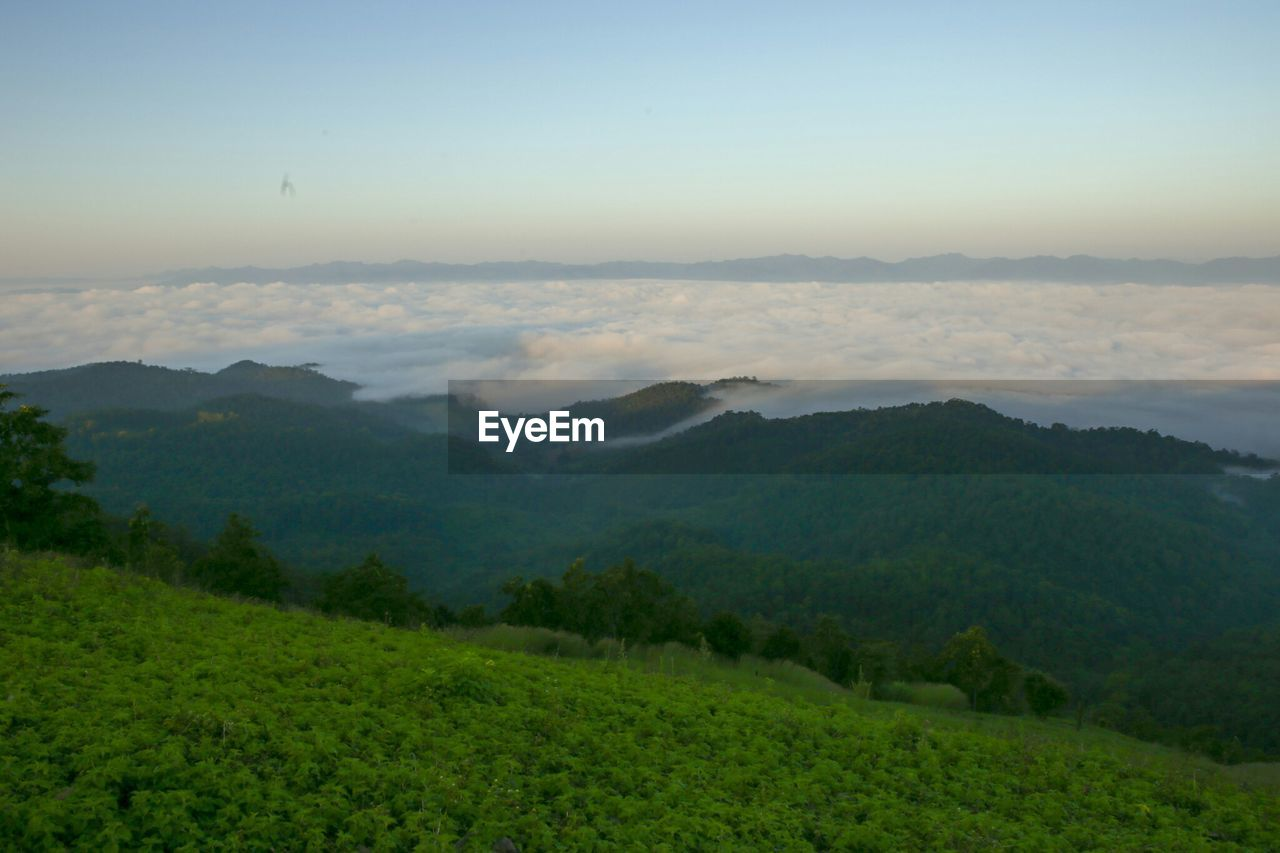 scenics - nature, sky, beauty in nature, tranquil scene, tranquility, environment, landscape, mountain, green color, non-urban scene, no people, nature, idyllic, cloud - sky, plant, mountain range, tree, fog, remote, outdoors