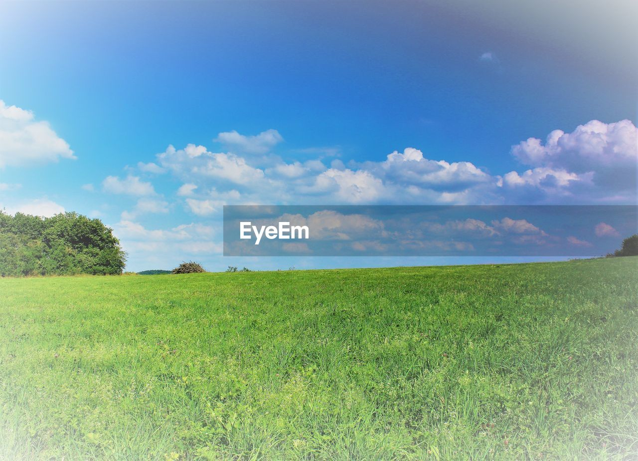sky, grass, landscape, environment, field, tranquil scene, tranquility, cloud - sky, beauty in nature, plant, land, green color, nature, scenics - nature, horizon, non-urban scene, day, growth, horizon over land, no people, outdoors, spring