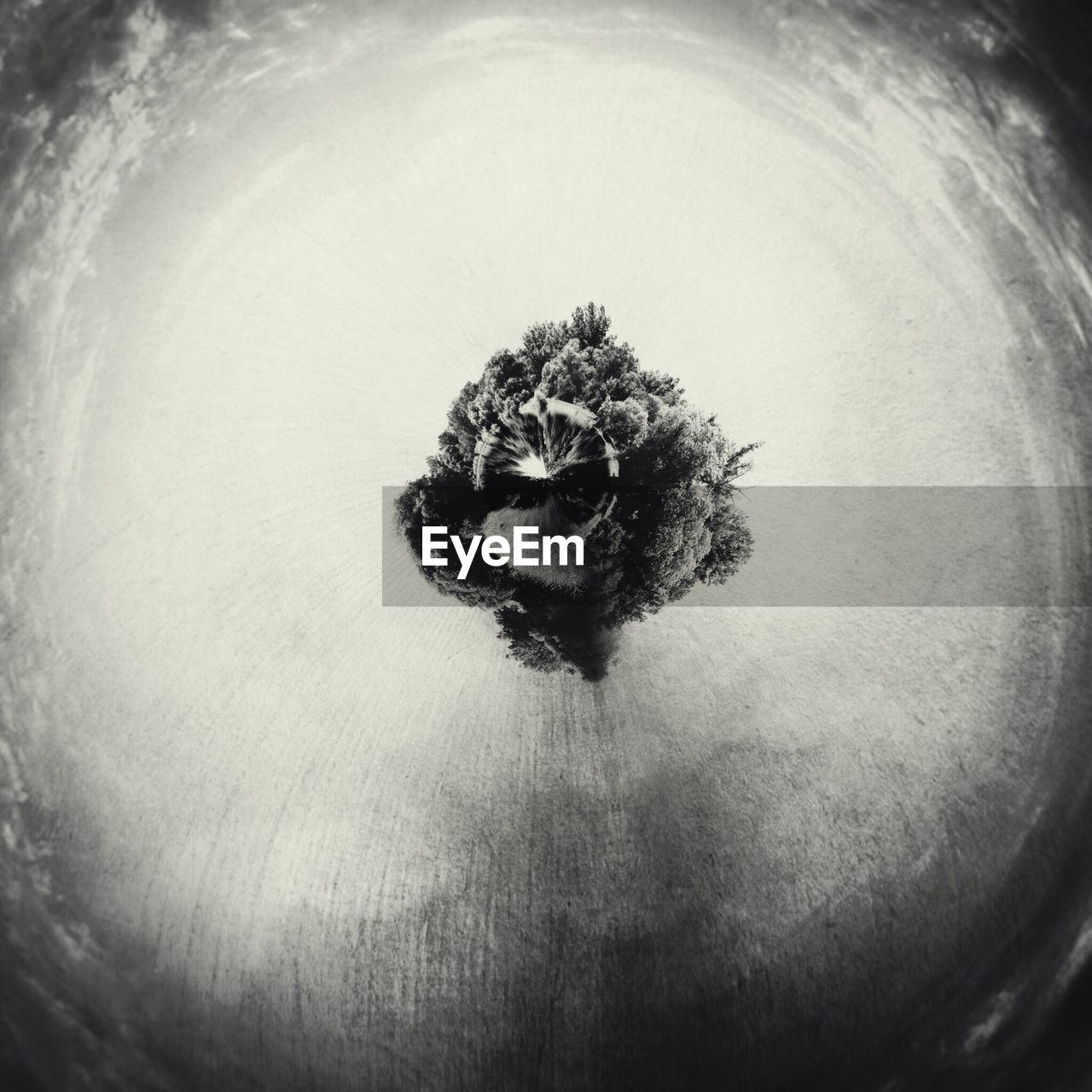 Digital composite image of trees and planet